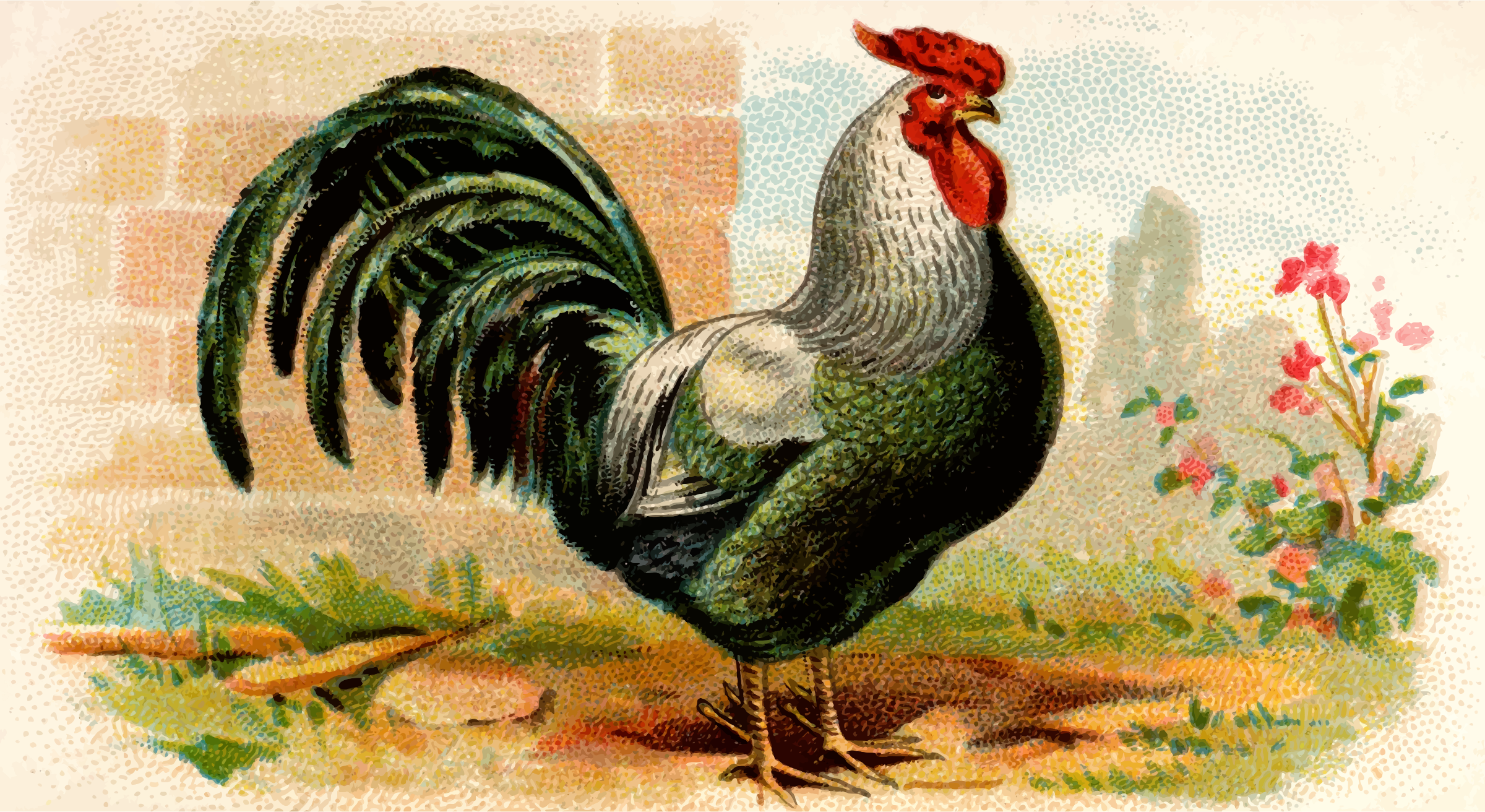 Cigarette card - Rose-Combed Dorking Cock by Firkin