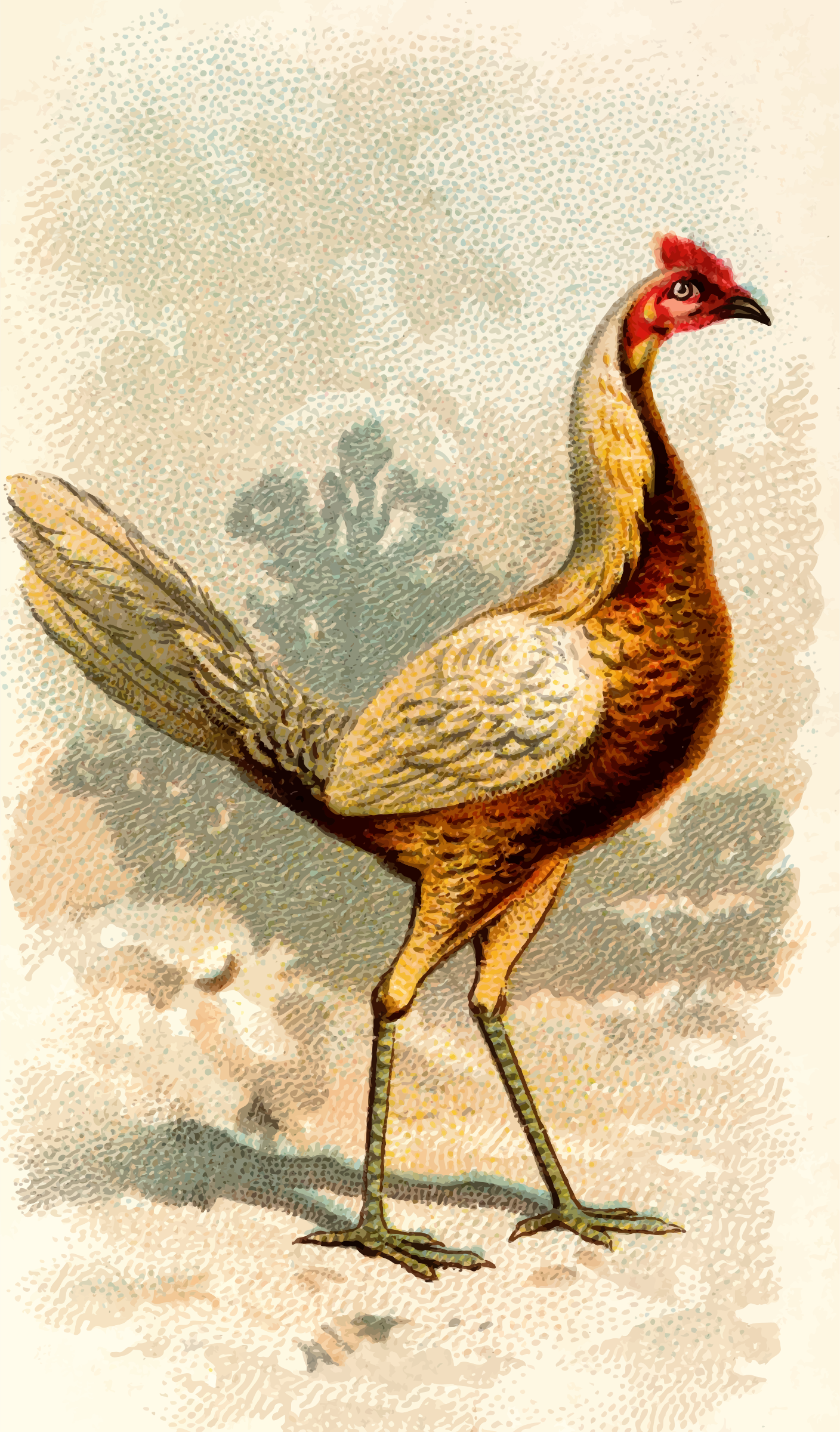 Cigarette card - Pile Game Hen by Firkin