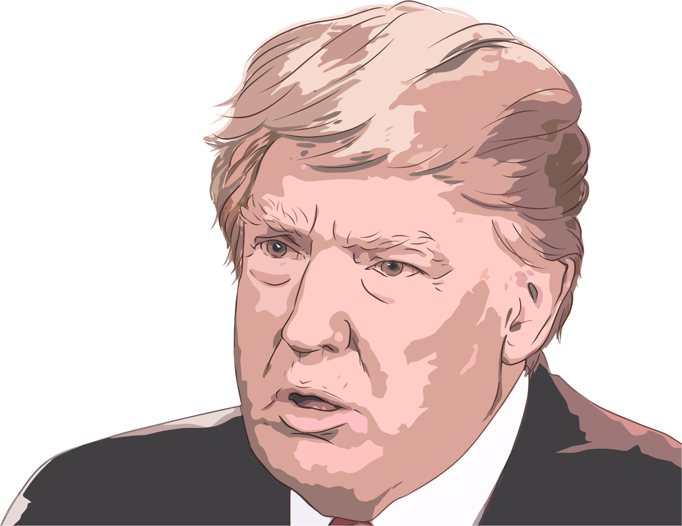 Clipart Donald Trump Portrait 3