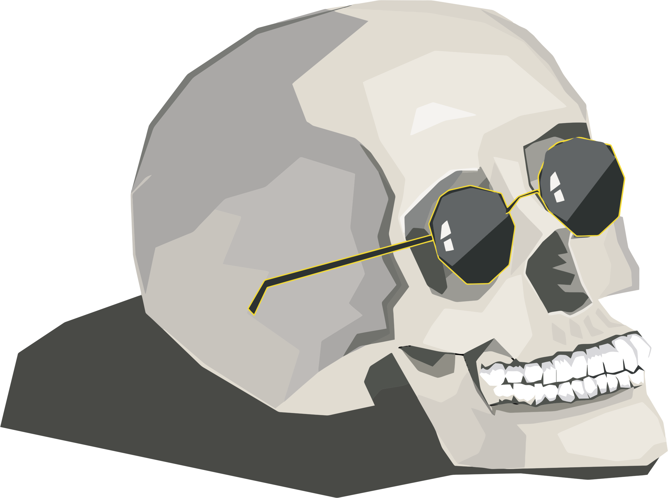 Skull Wearing Sunglasses by GDJ