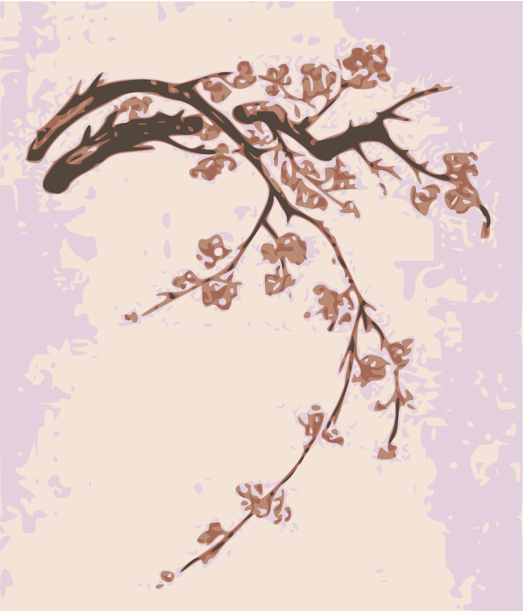 Plum Blossoms by j4p4n