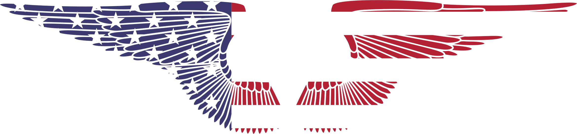 American Hand Drawn Wings by GDJ