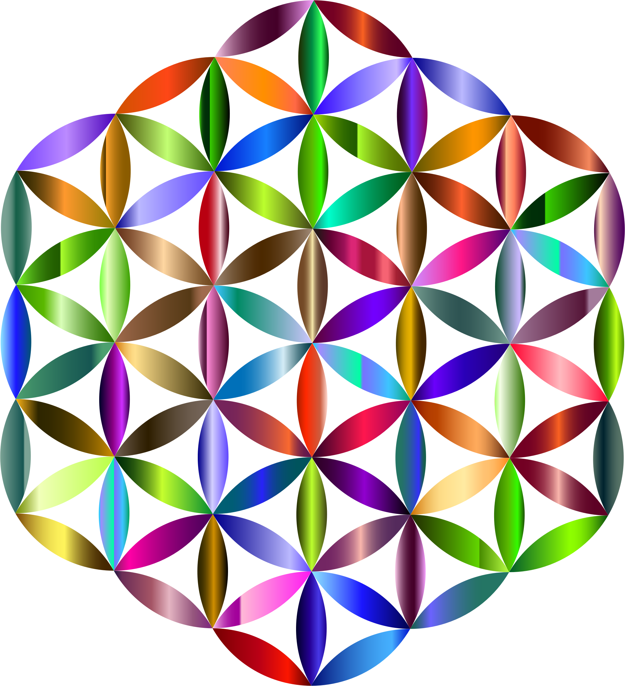 Prismatic Flower Of Life 2 by GDJ
