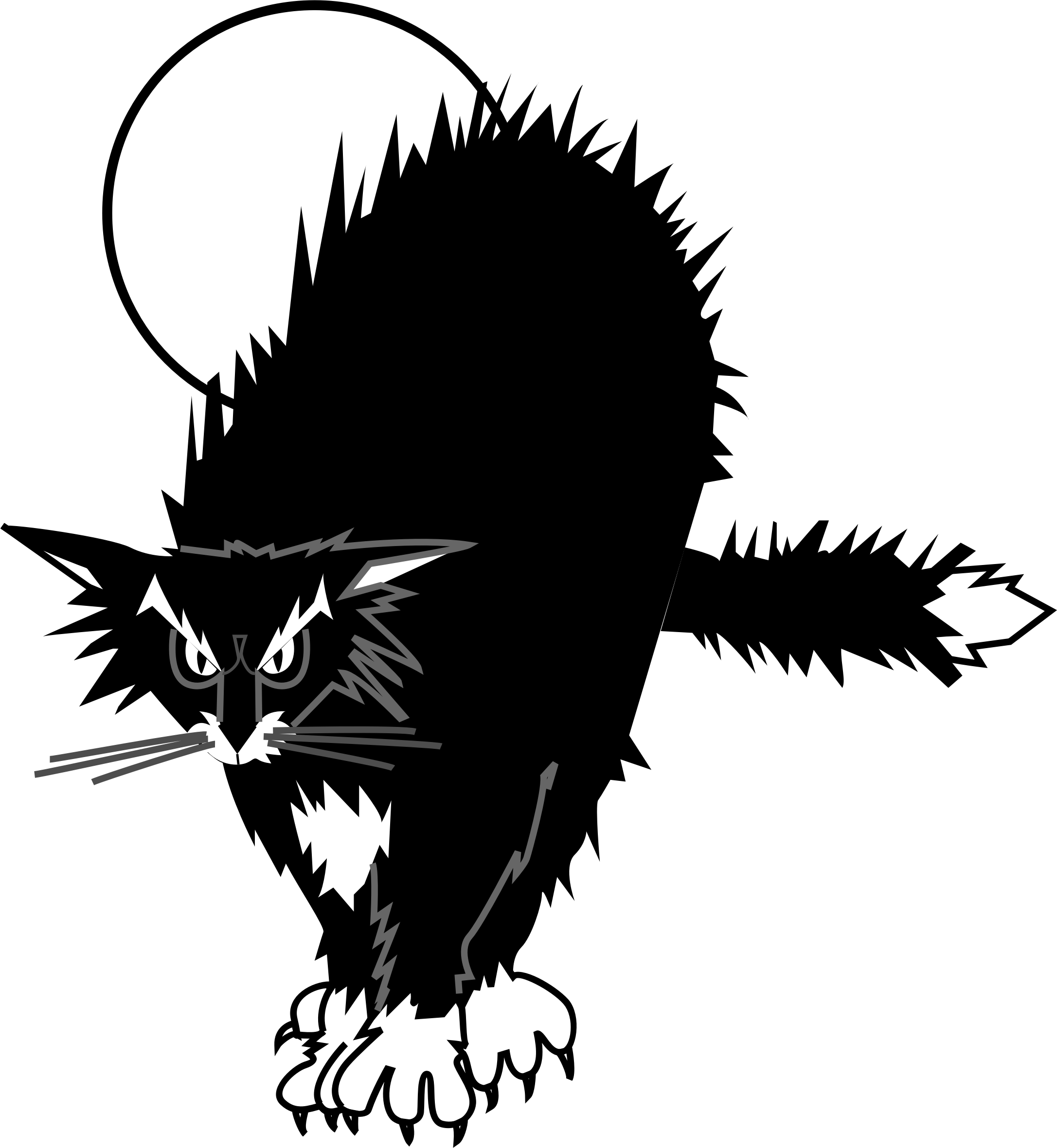 black cat by cactus cowboy