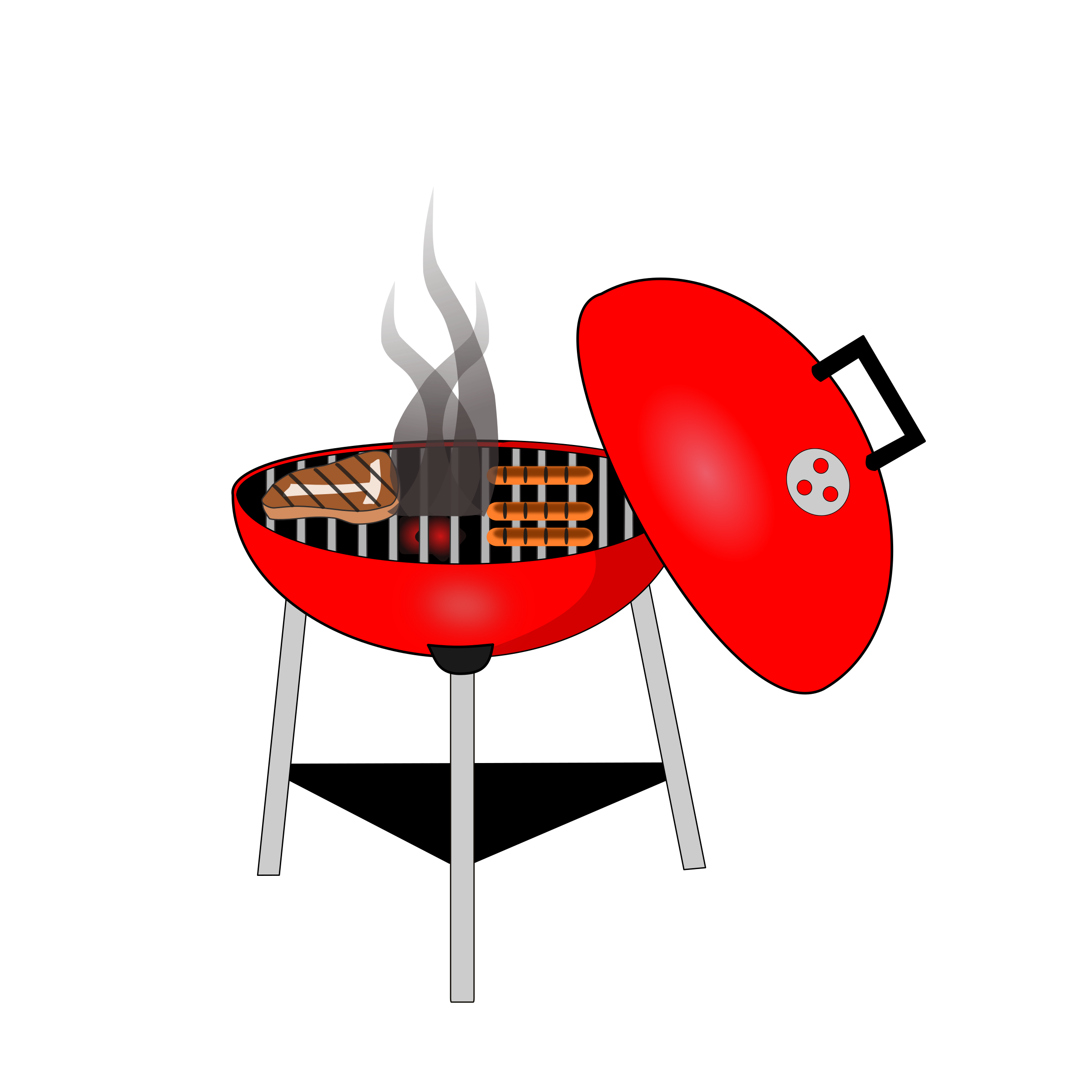 barbecue grill by DebraK