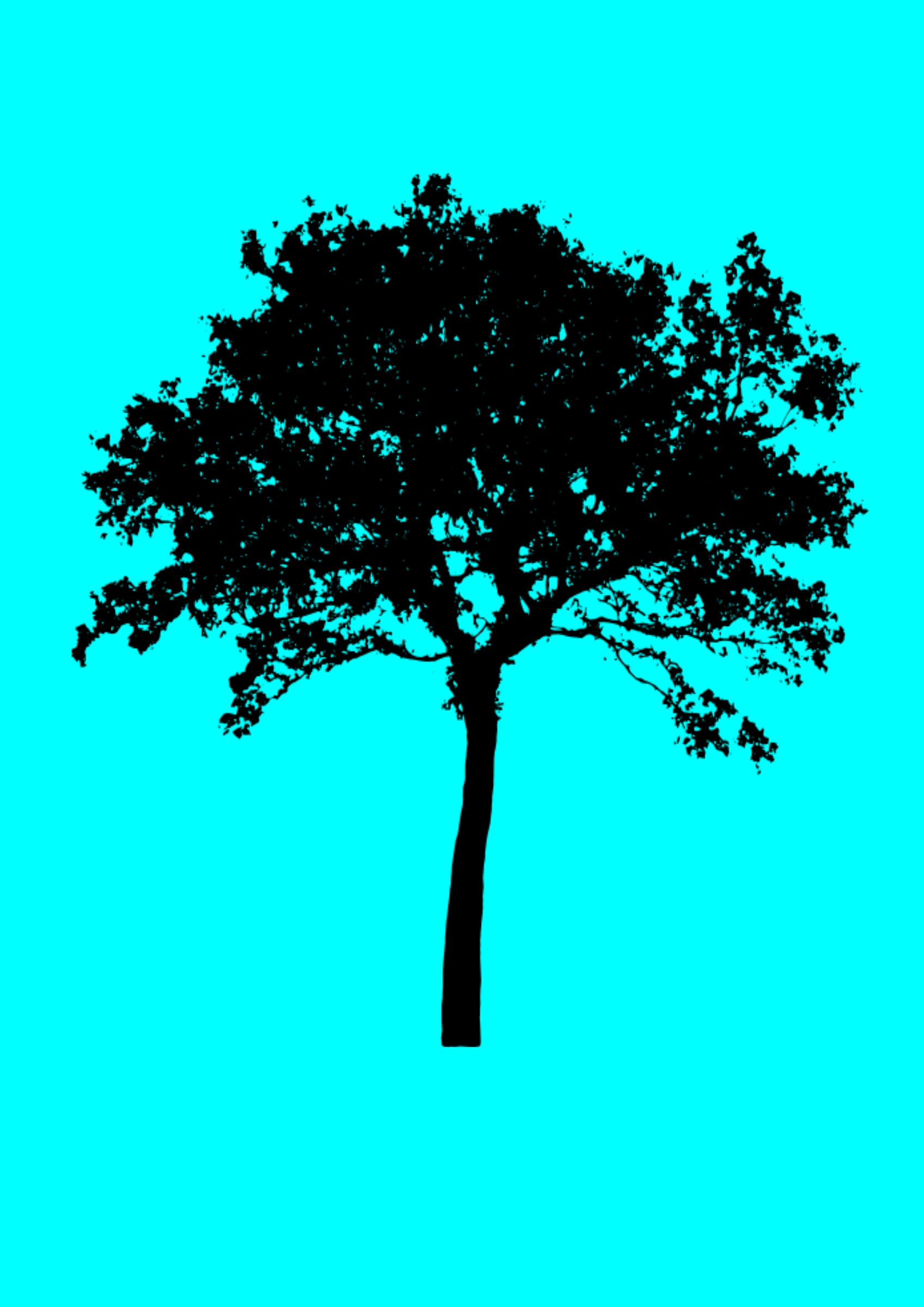 Tree silhouette by gmendez101