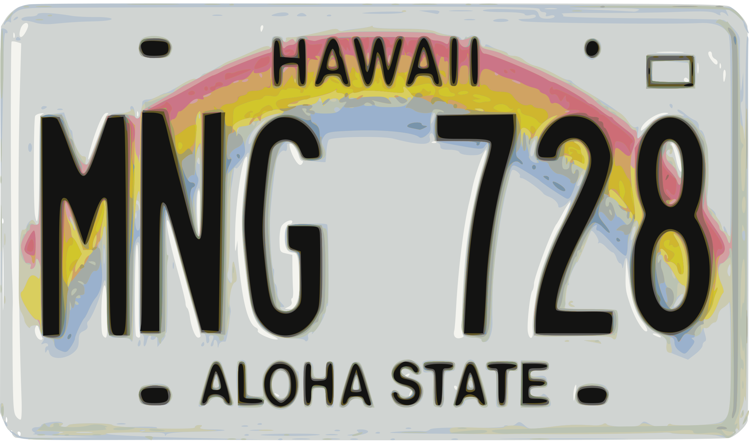 Hawaiian License Plate by j4p4n