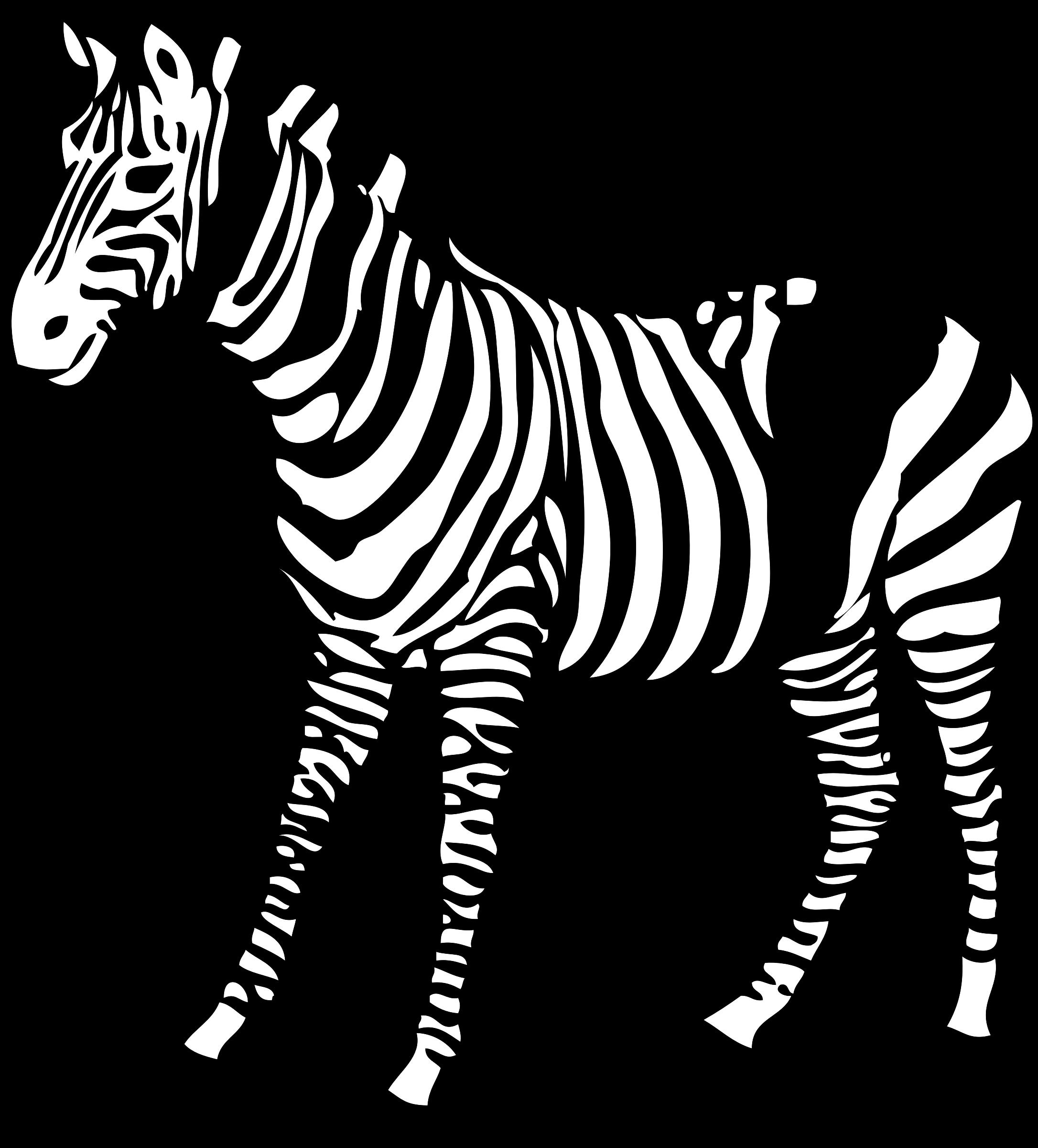 Картинки зебра раскраски
