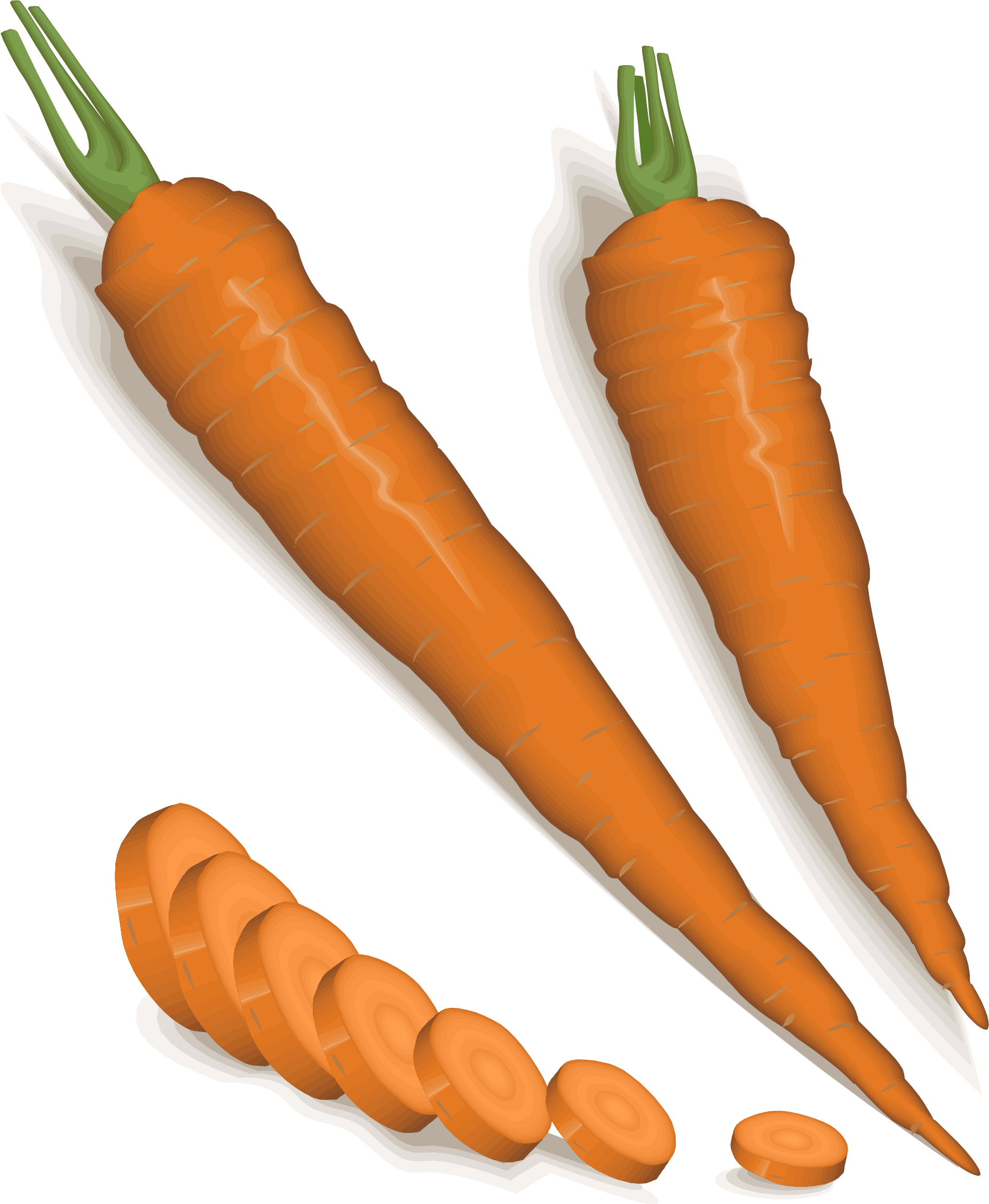 carrots by cactus cowboy