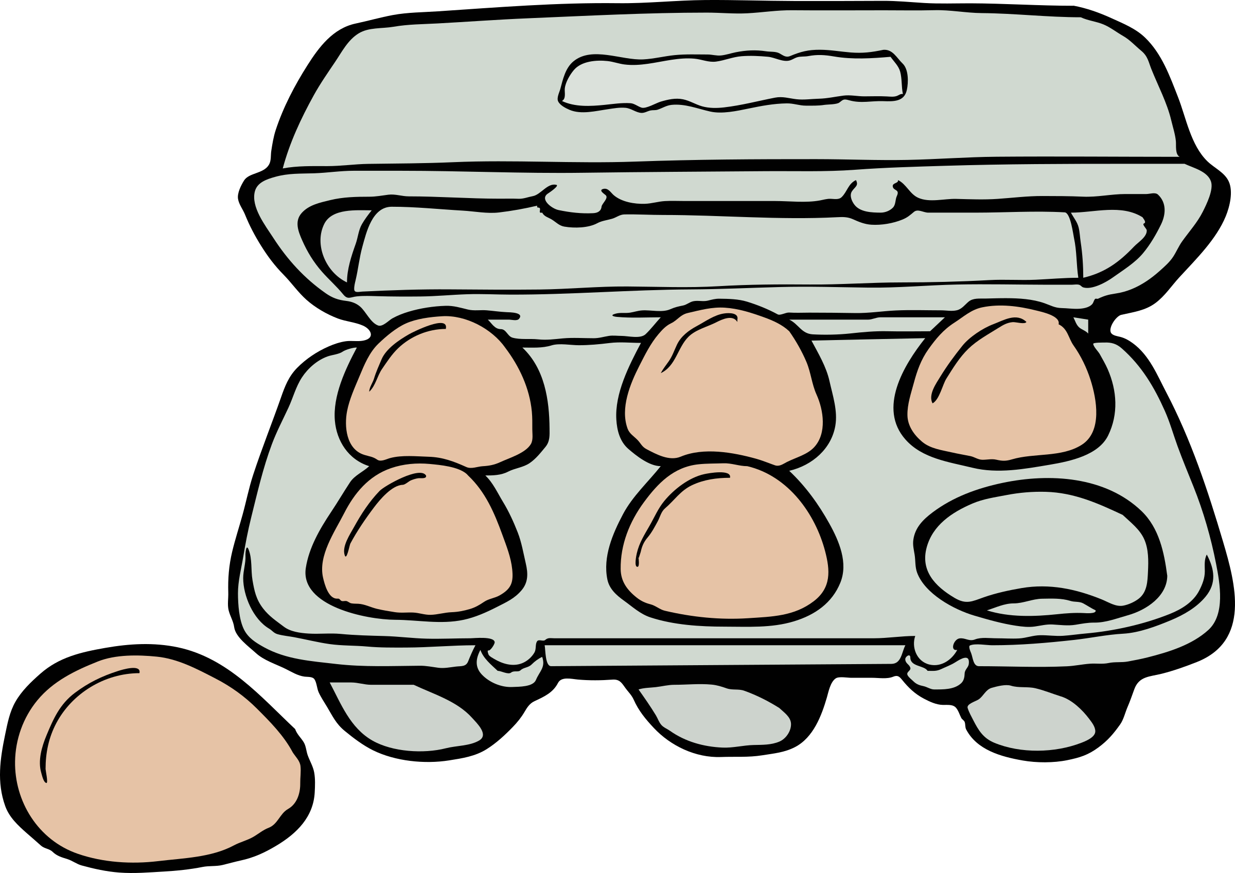 Carton of Brown Eggs by j4p4n