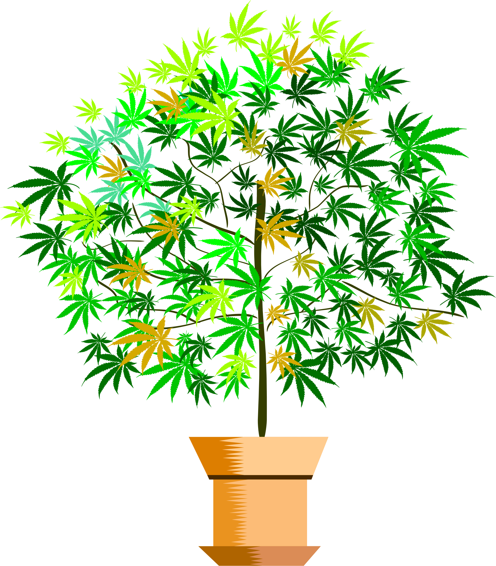a potted plant by cactus cowboy