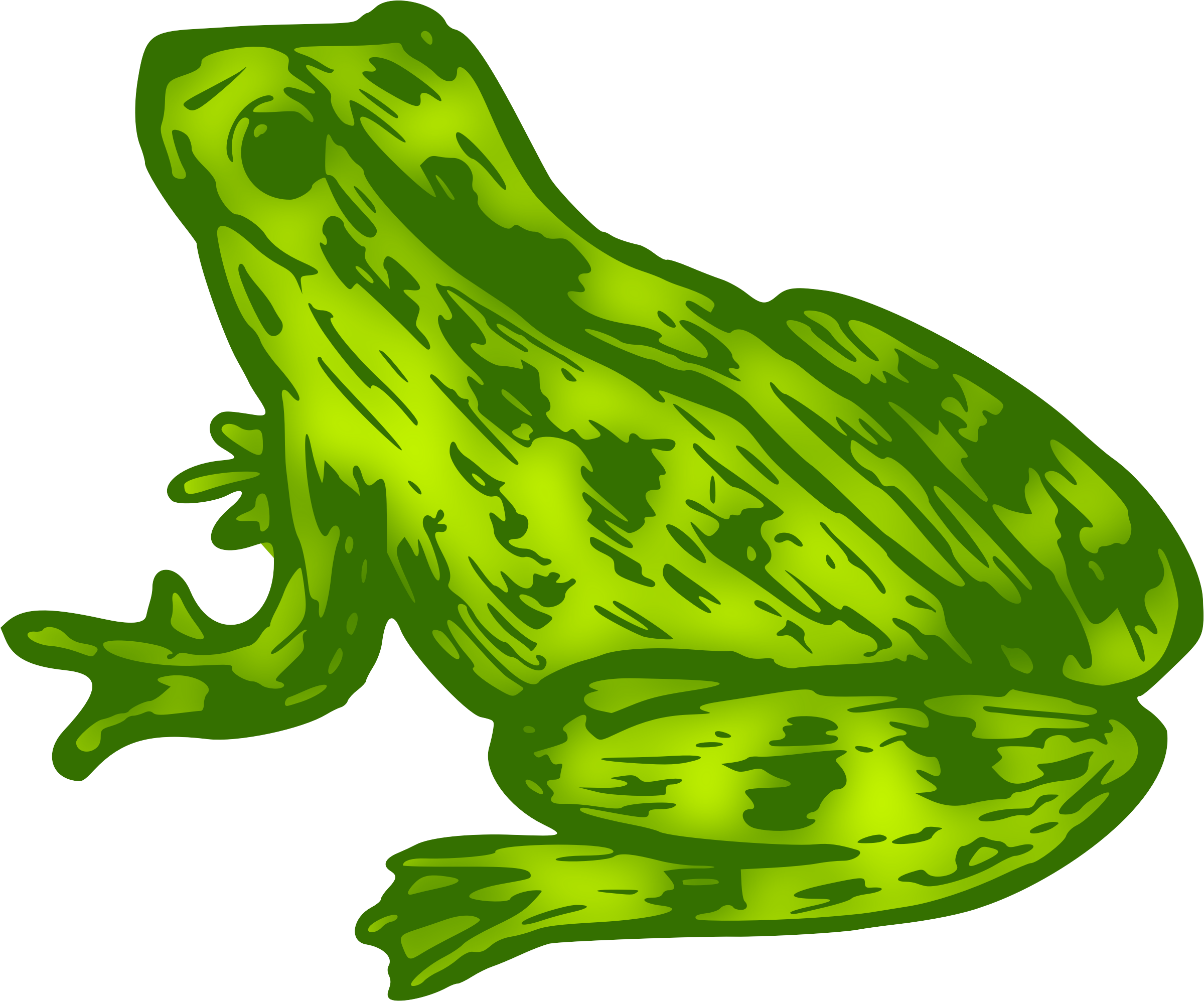 Frog 9 (colour) by Firkin
