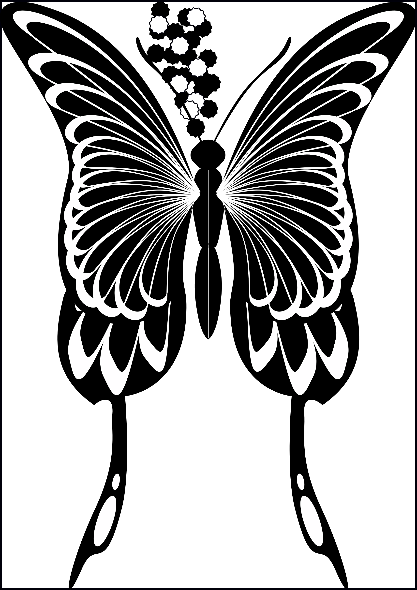 Silhouette, Black Swallowtail by imdeggman