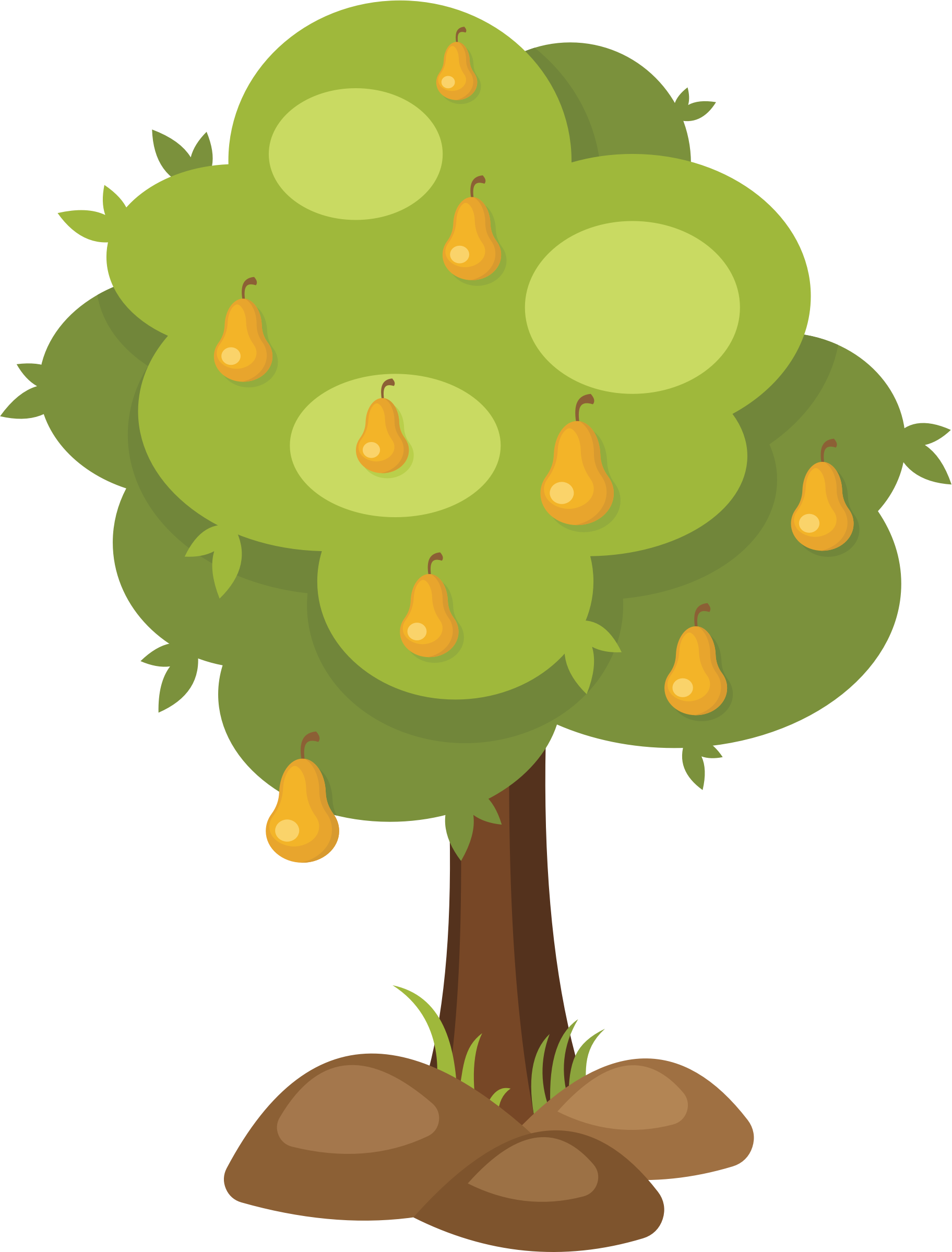 clipart pear tree tree clip art template tree clip art images