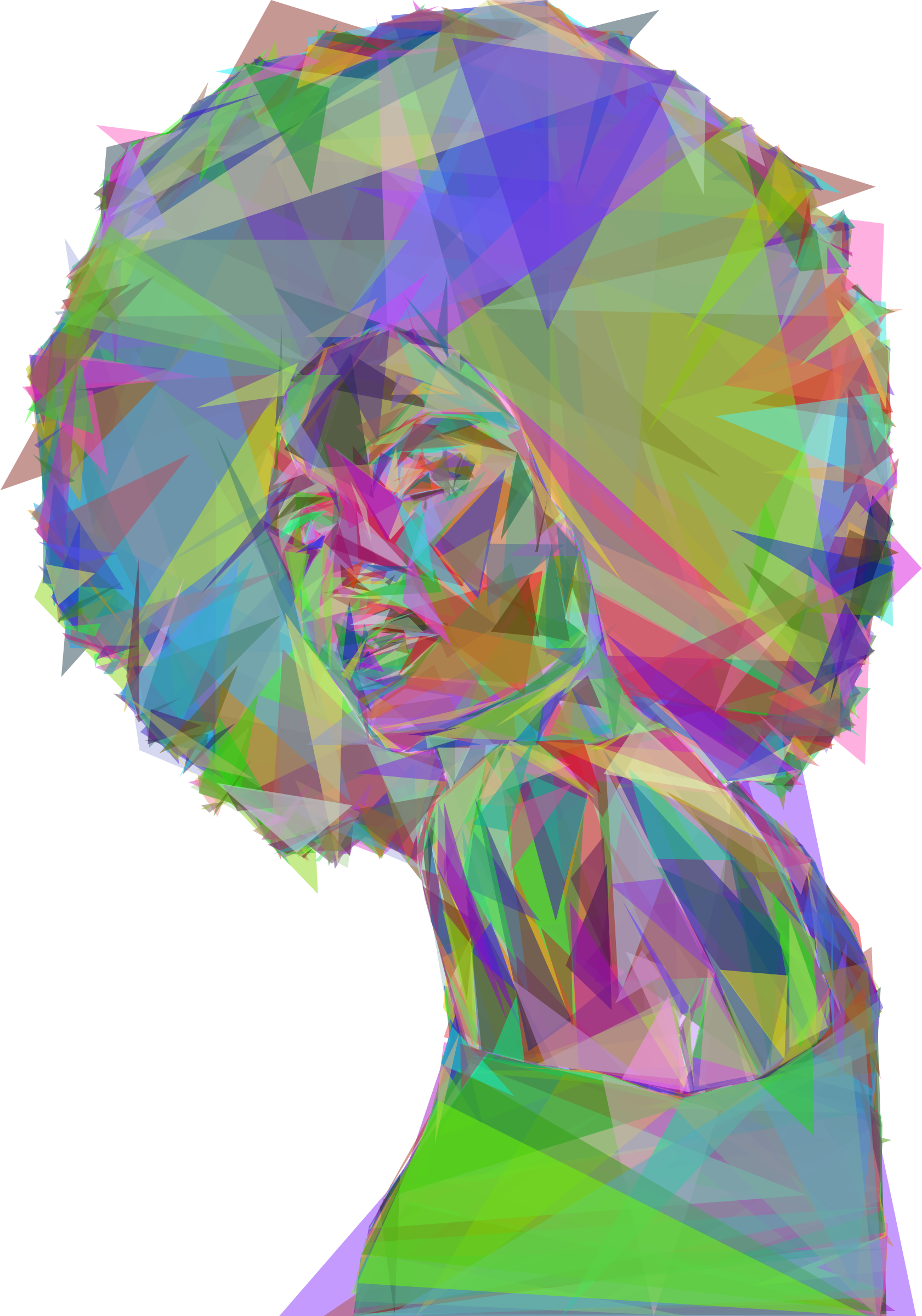 Beautiful Black Woman 2 Geometric Prismatic by GDJ