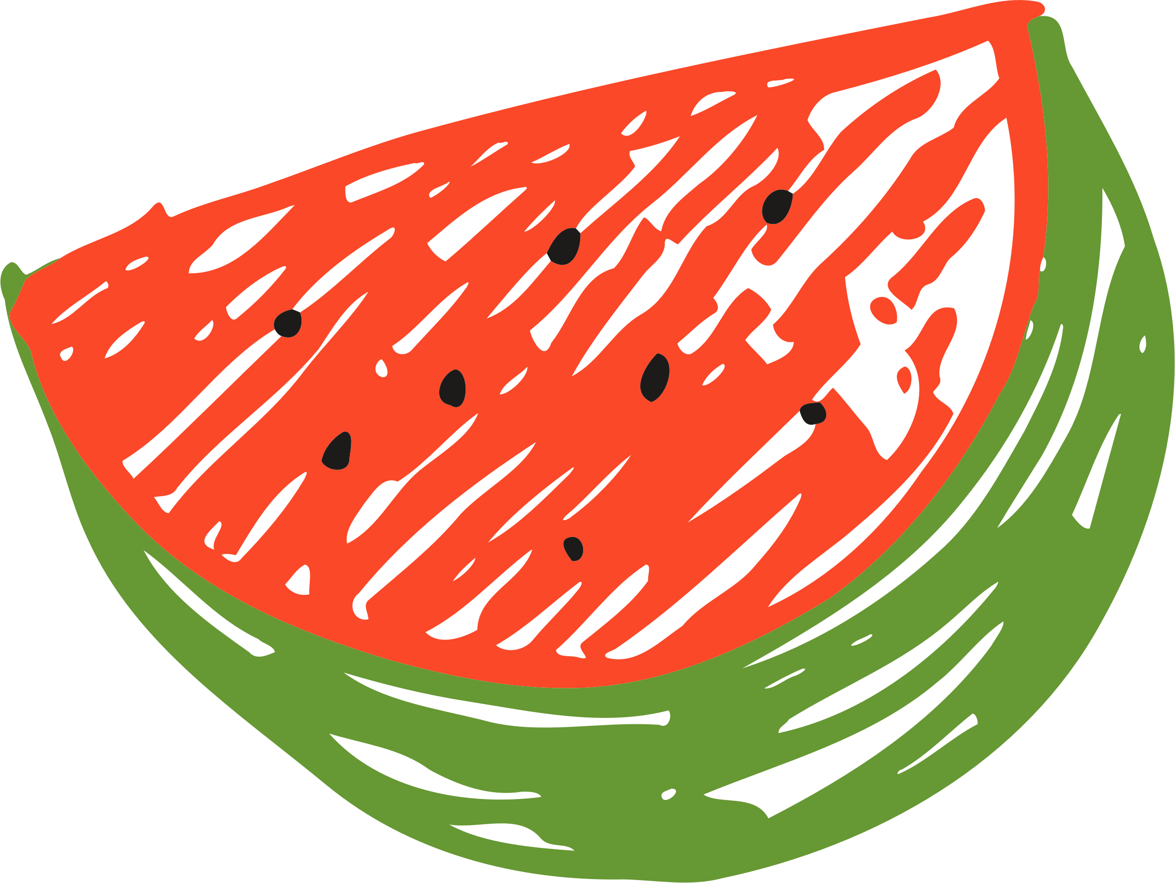Sketched watermelon by Firkin