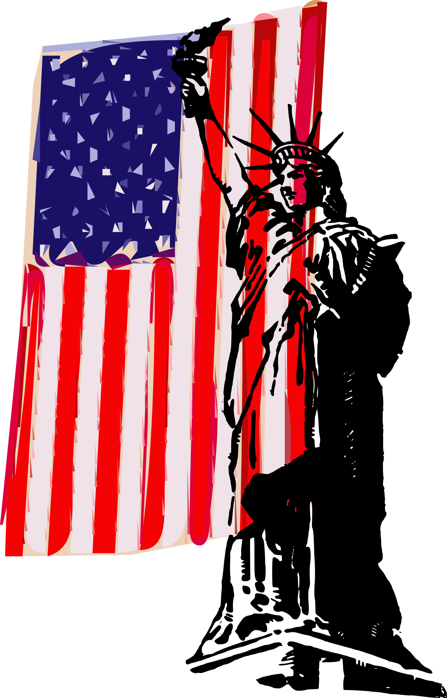 Liberty and a Flag by j4p4n
