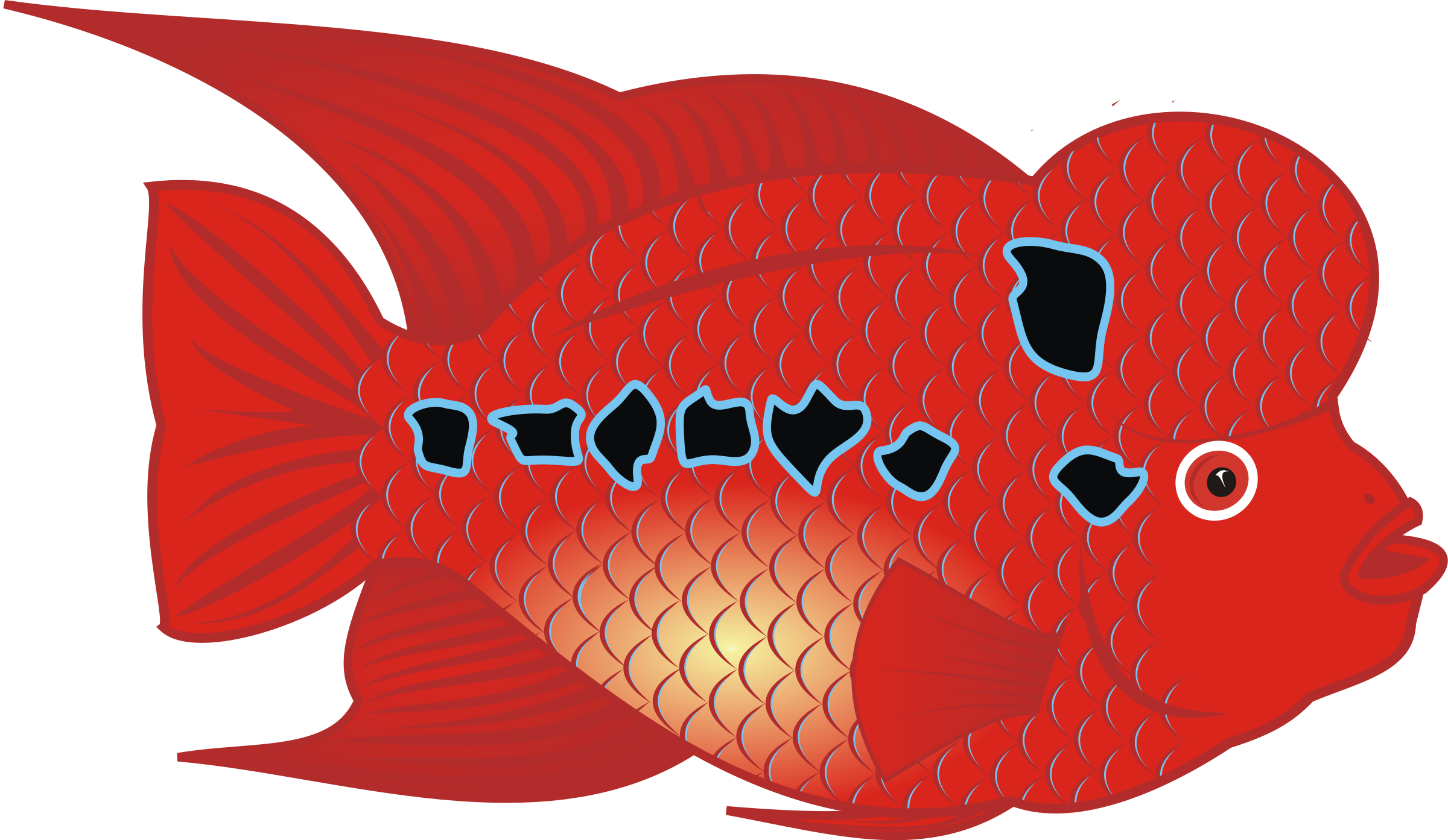 Flowerhorn Fish by danz