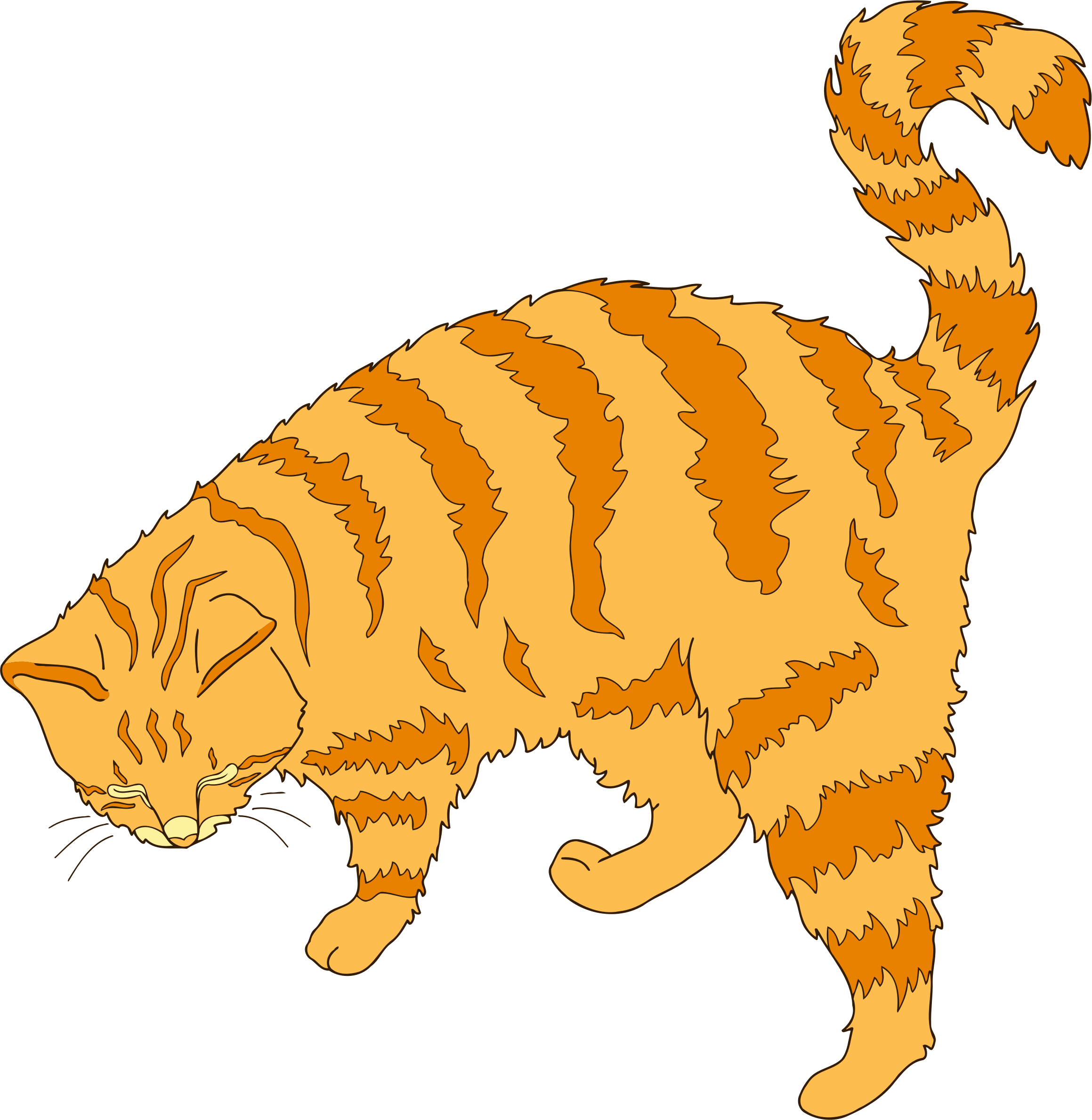 Ginger cat by Firkin