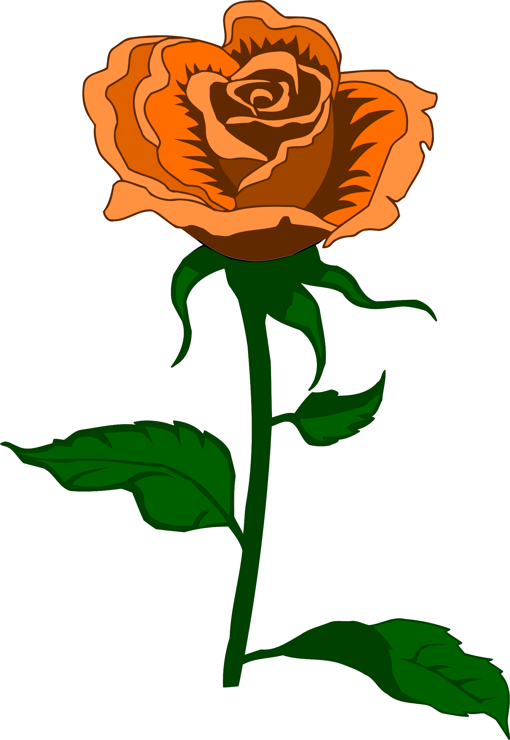 Rose 27 (colour 4) by Firkin