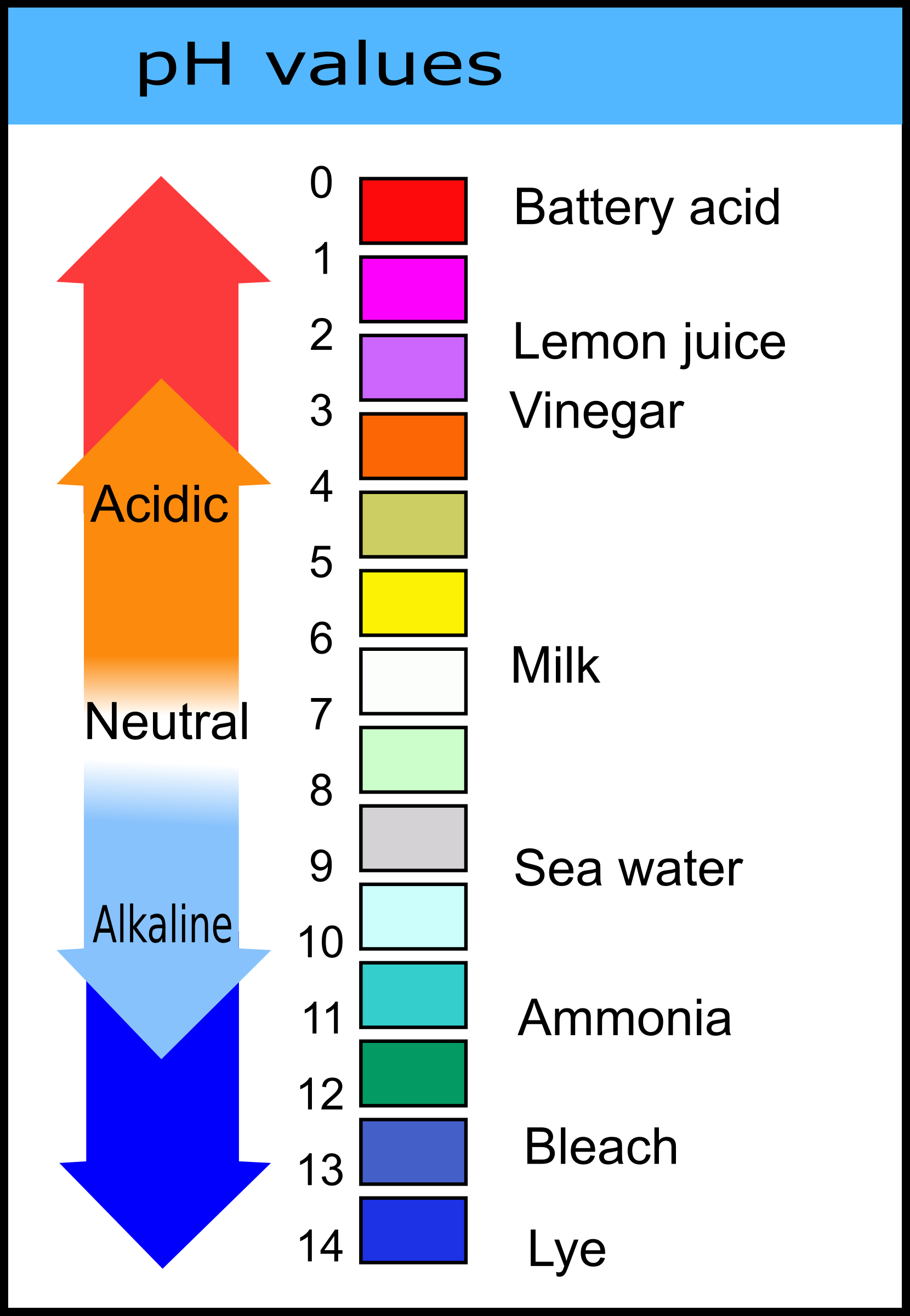 pH Values Chart by j4p4n