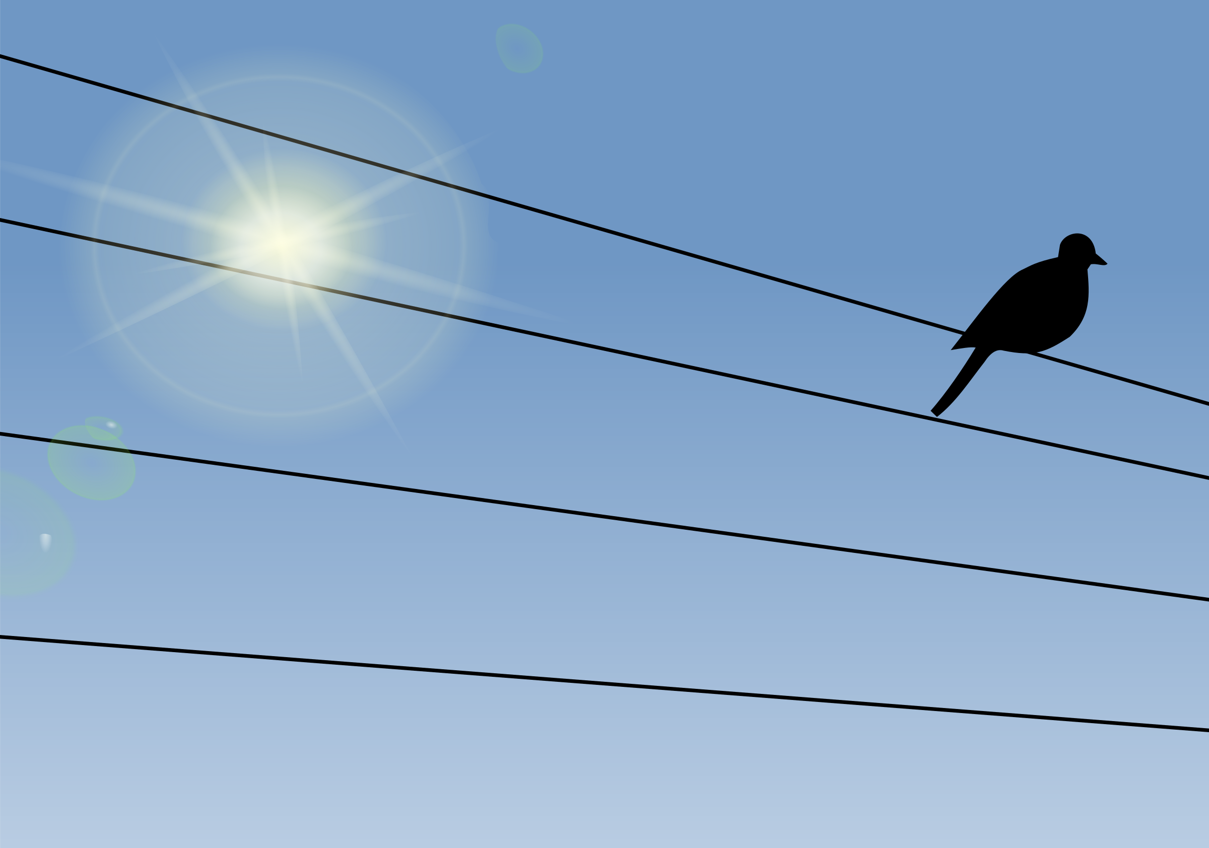 Bird on a Wire - Day by j4p4n