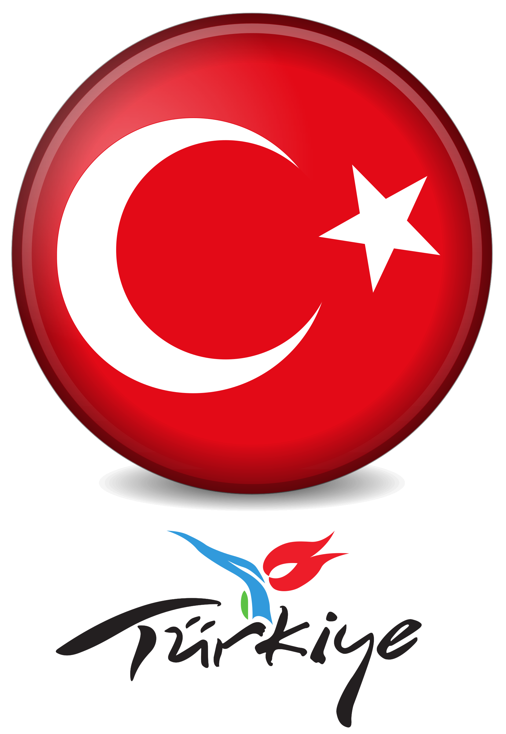 Turkey Logo by Balaha