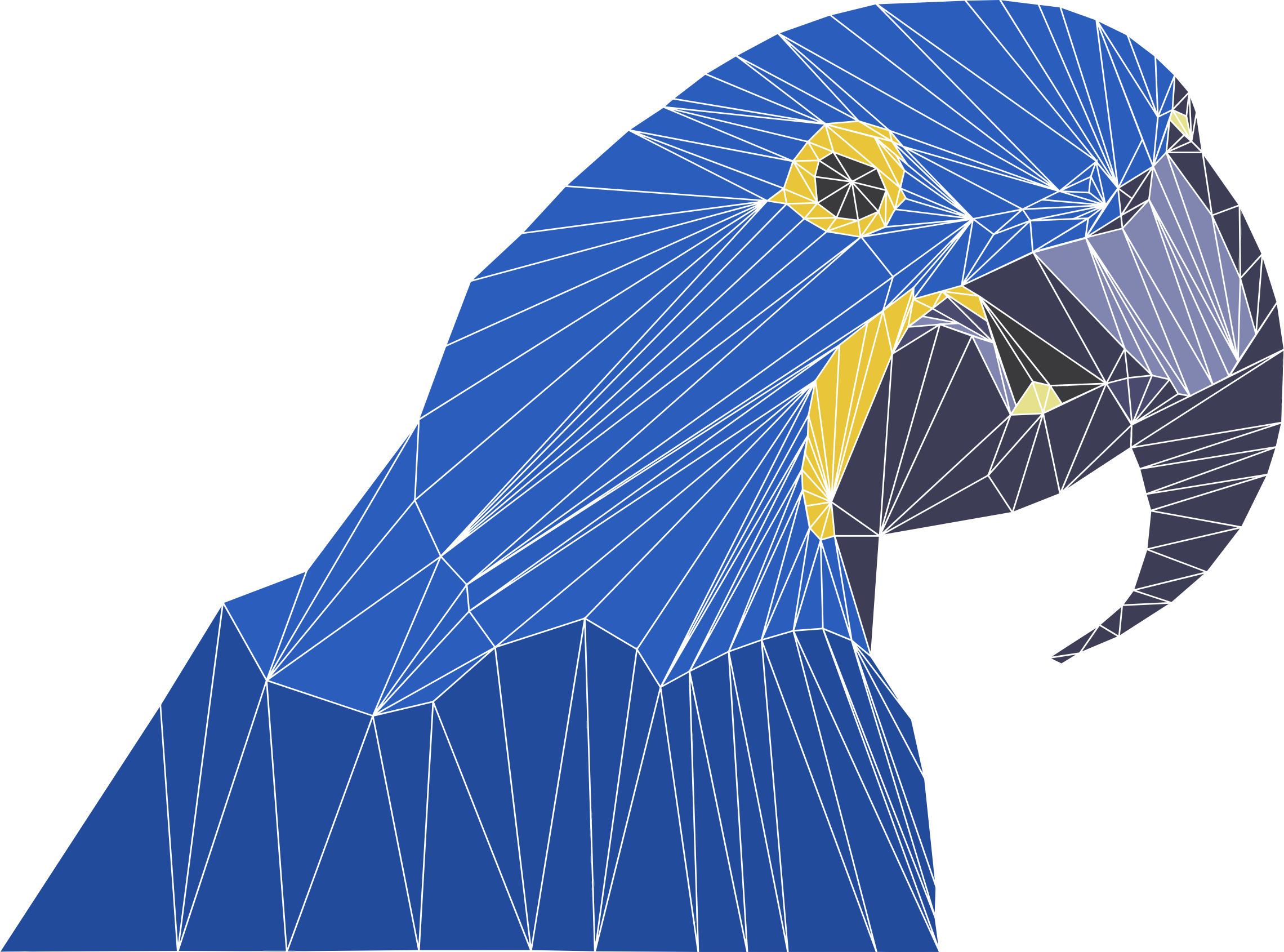 Low Poly Macaw By Emmie Norfolk by GDJ