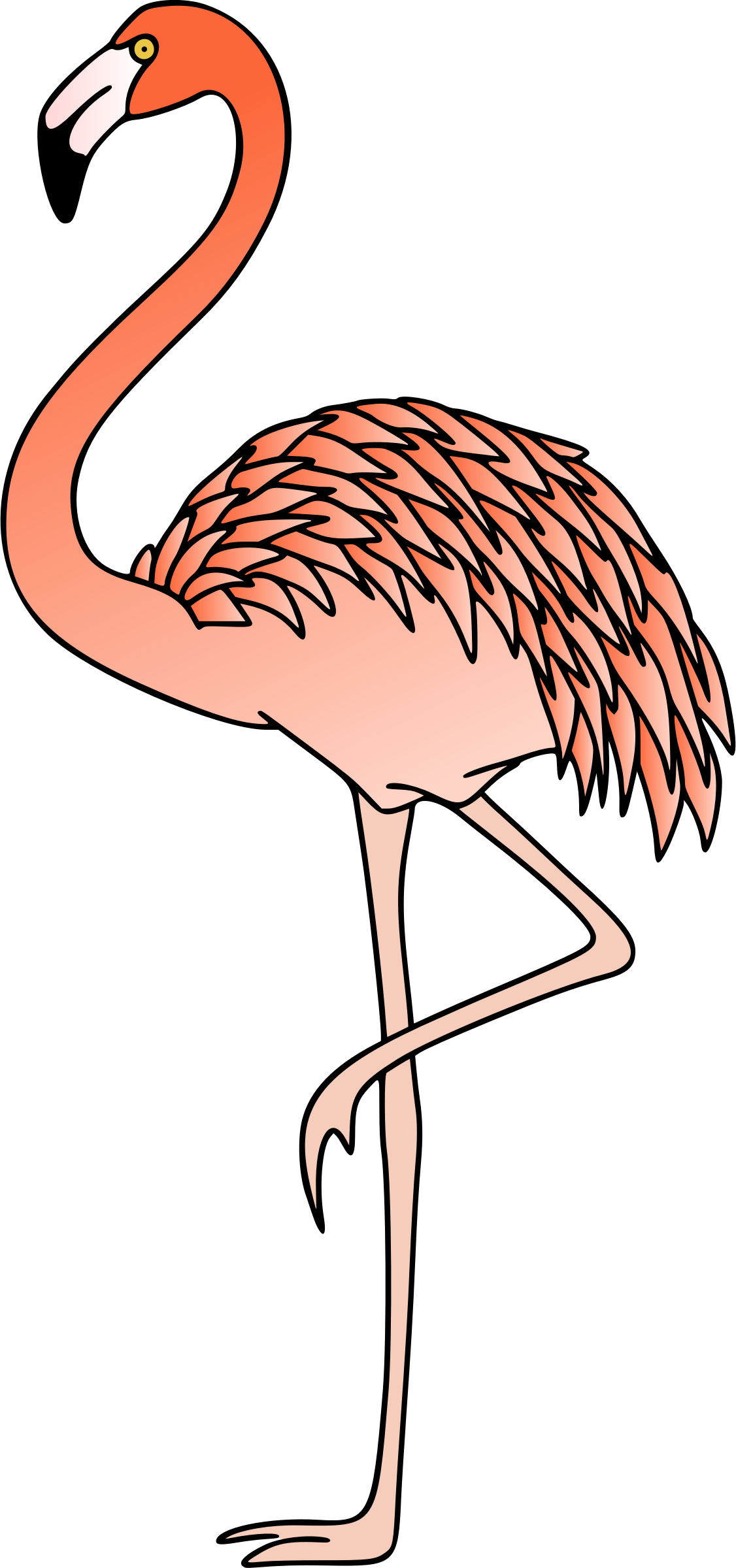 Flamingo 3 (colour) by Firkin