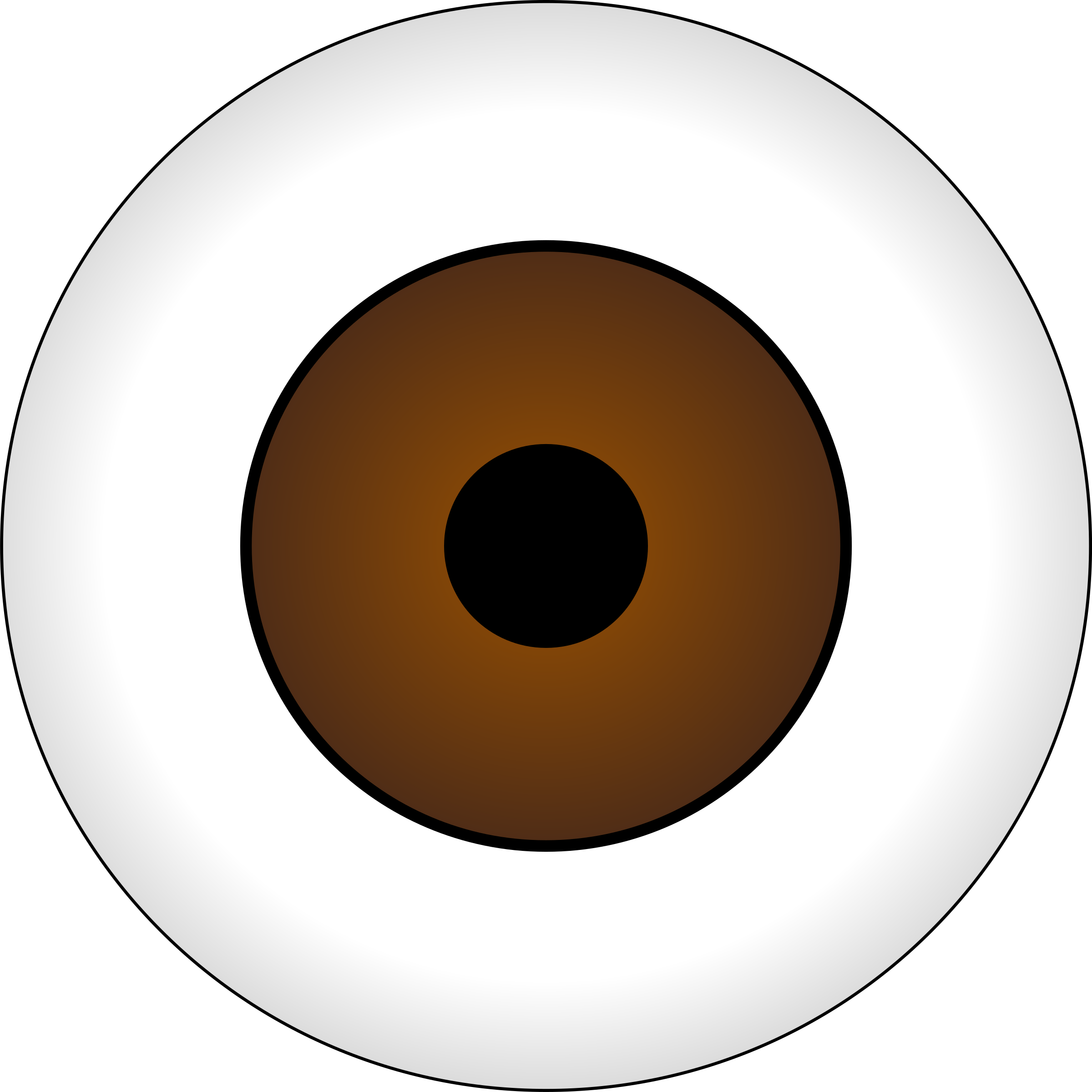 Olhos Castanhos/ Brown Eye by tonlima