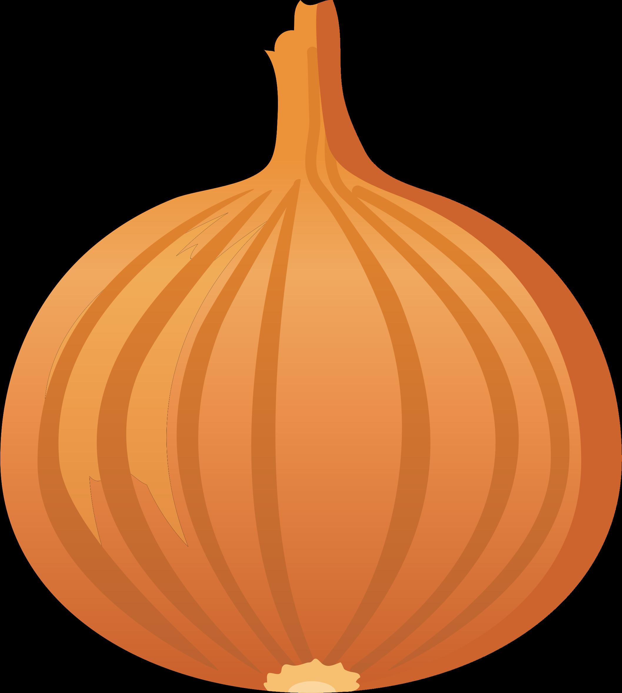 Onion by oksmith