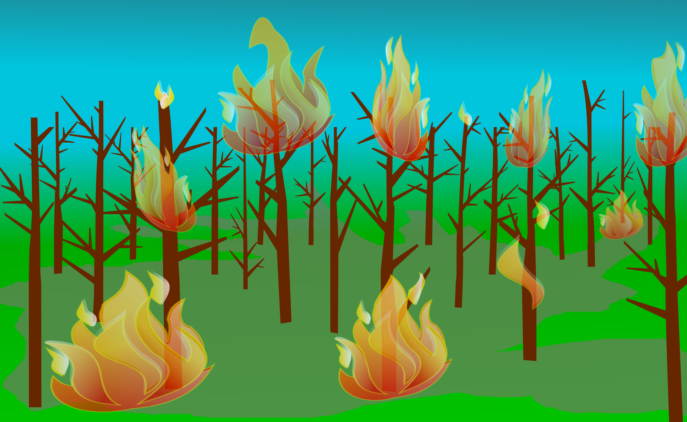 Forest Fire by j4p4n