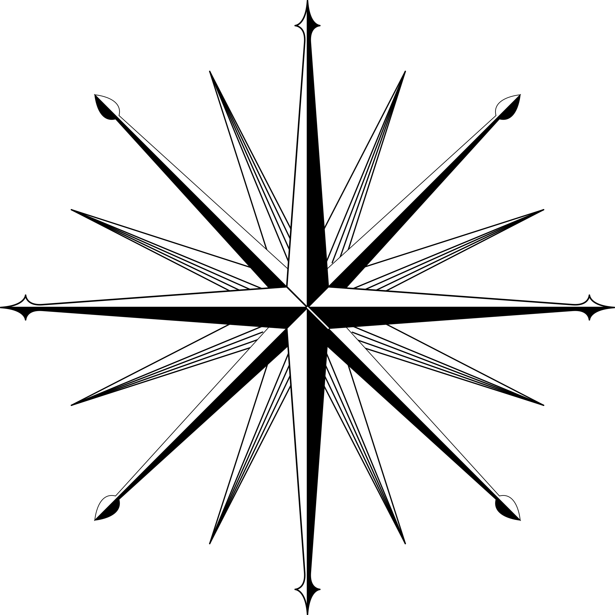 wind rose / compass rose by urwald