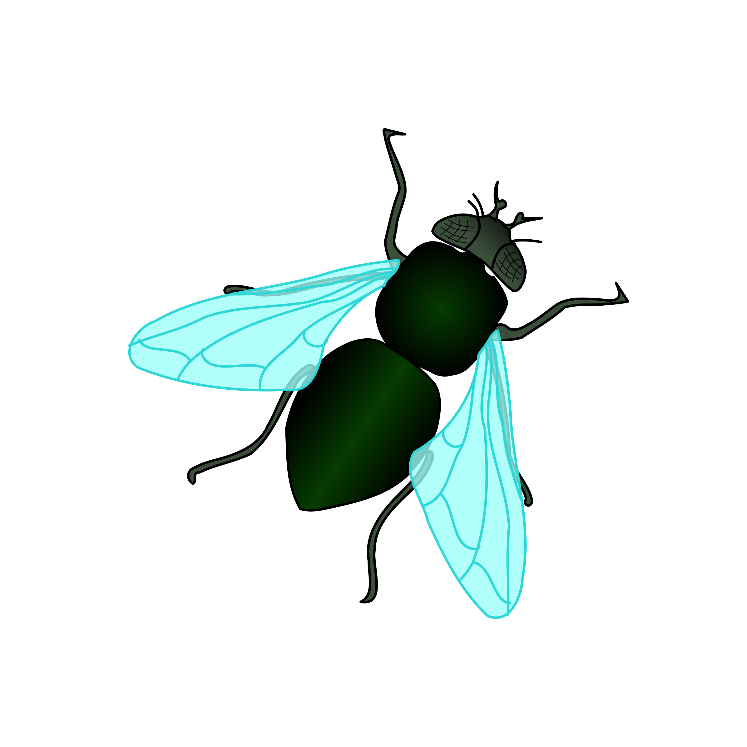 Green House Fly by bnielsen