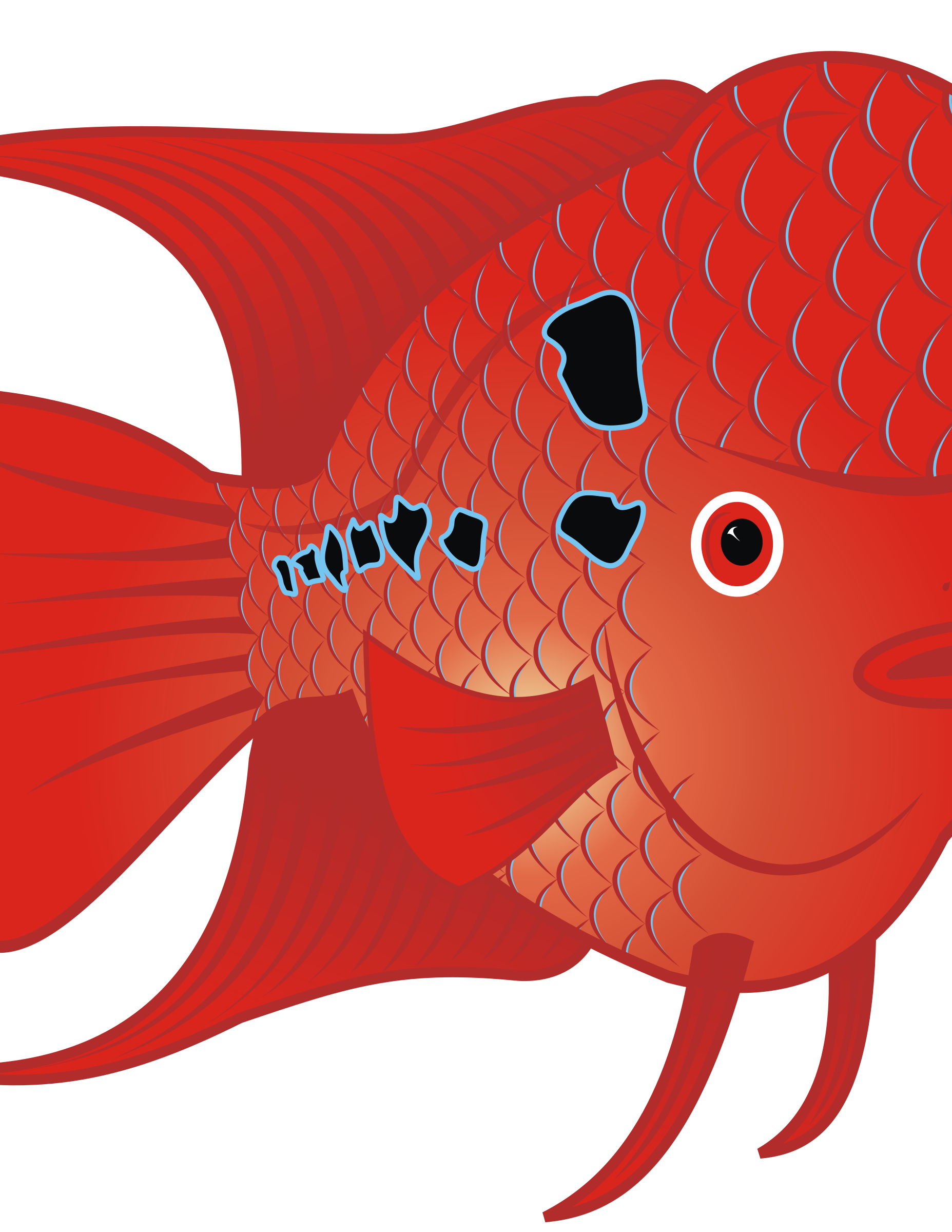 Flowerhorn Fish 2 by danz