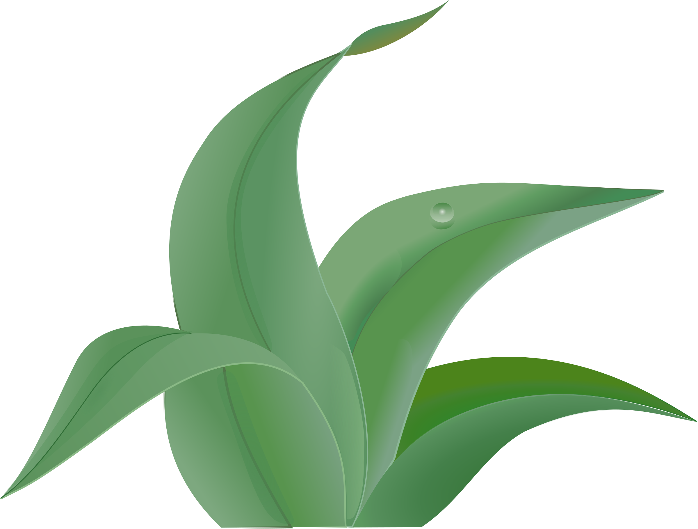 flower leaf clipart - photo #39