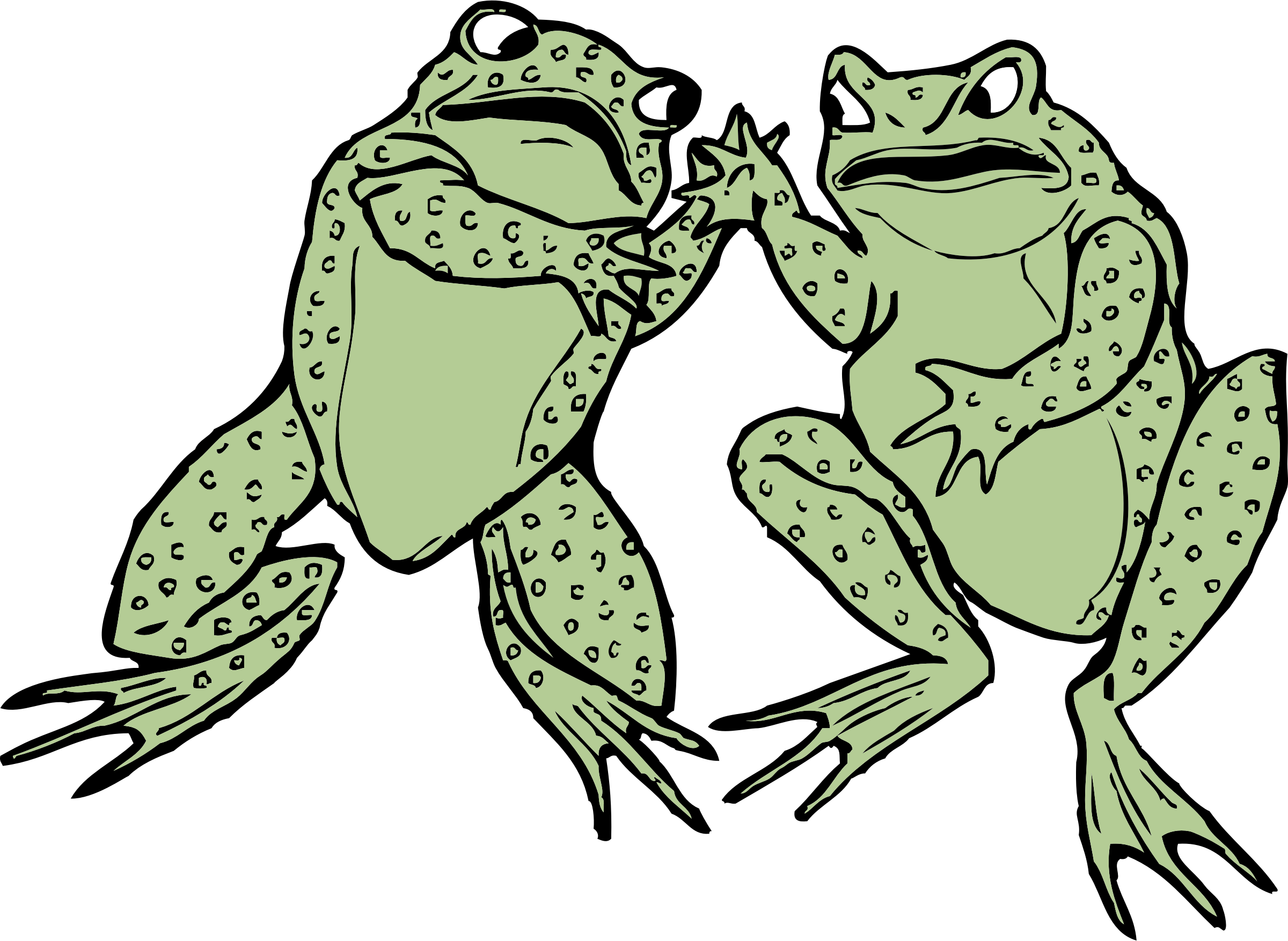 two frogs by johnny_automatic
