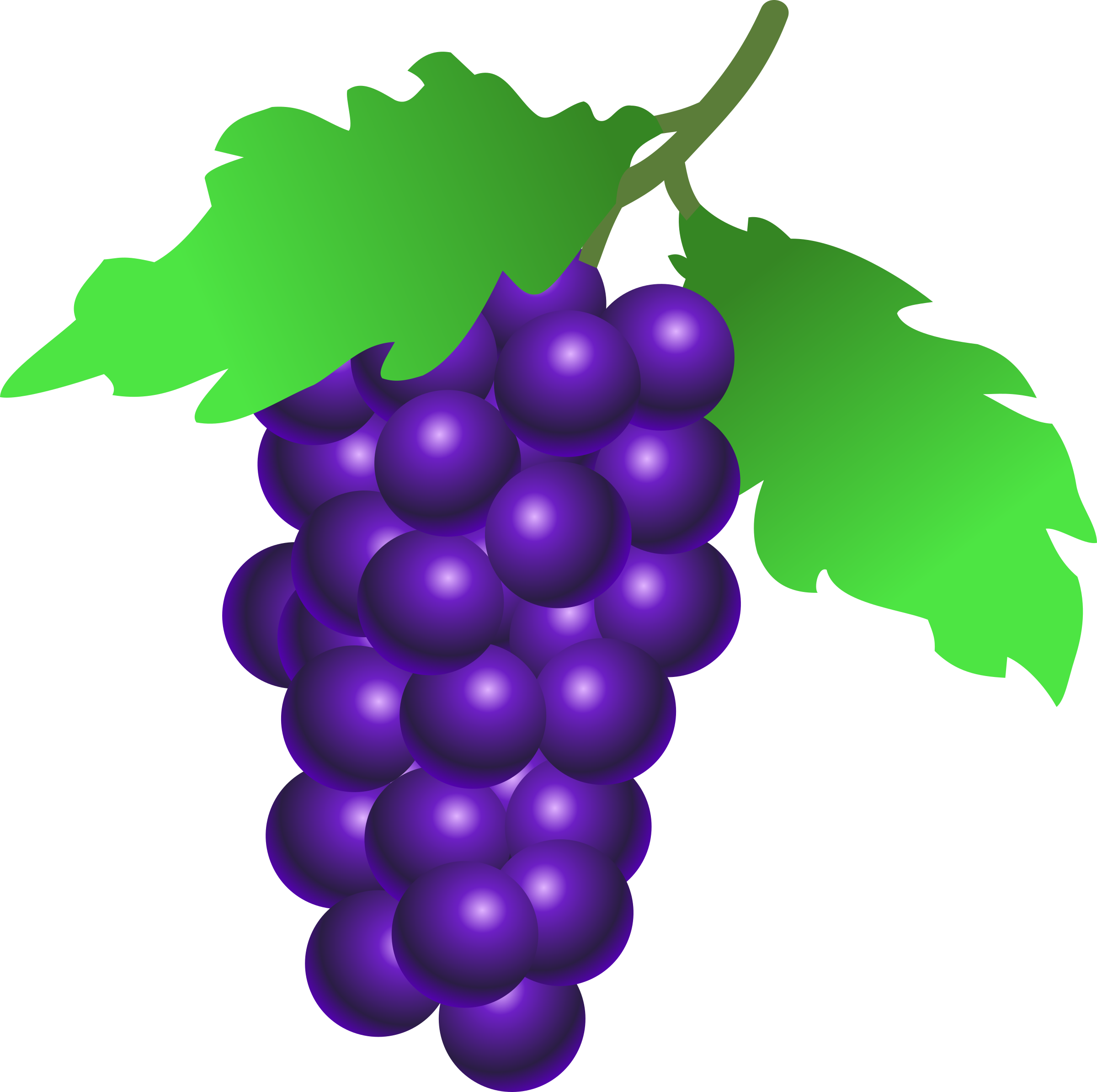 grapes by stuuf