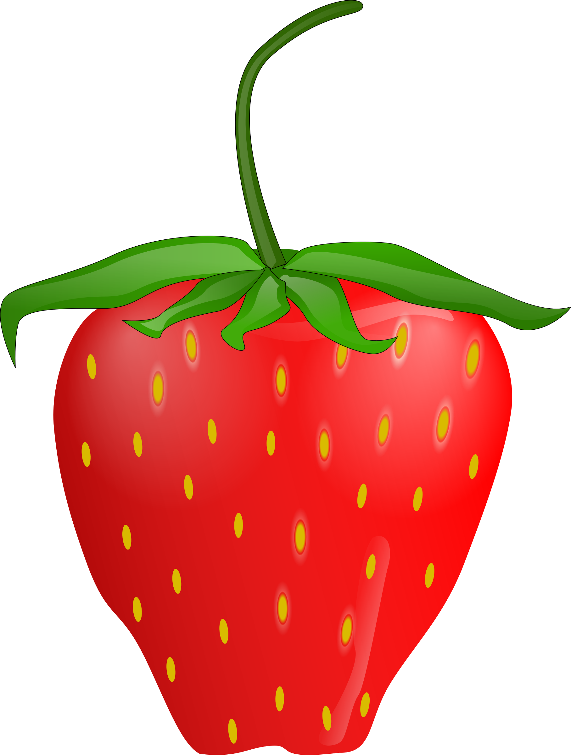 Strawberry by Anonymous