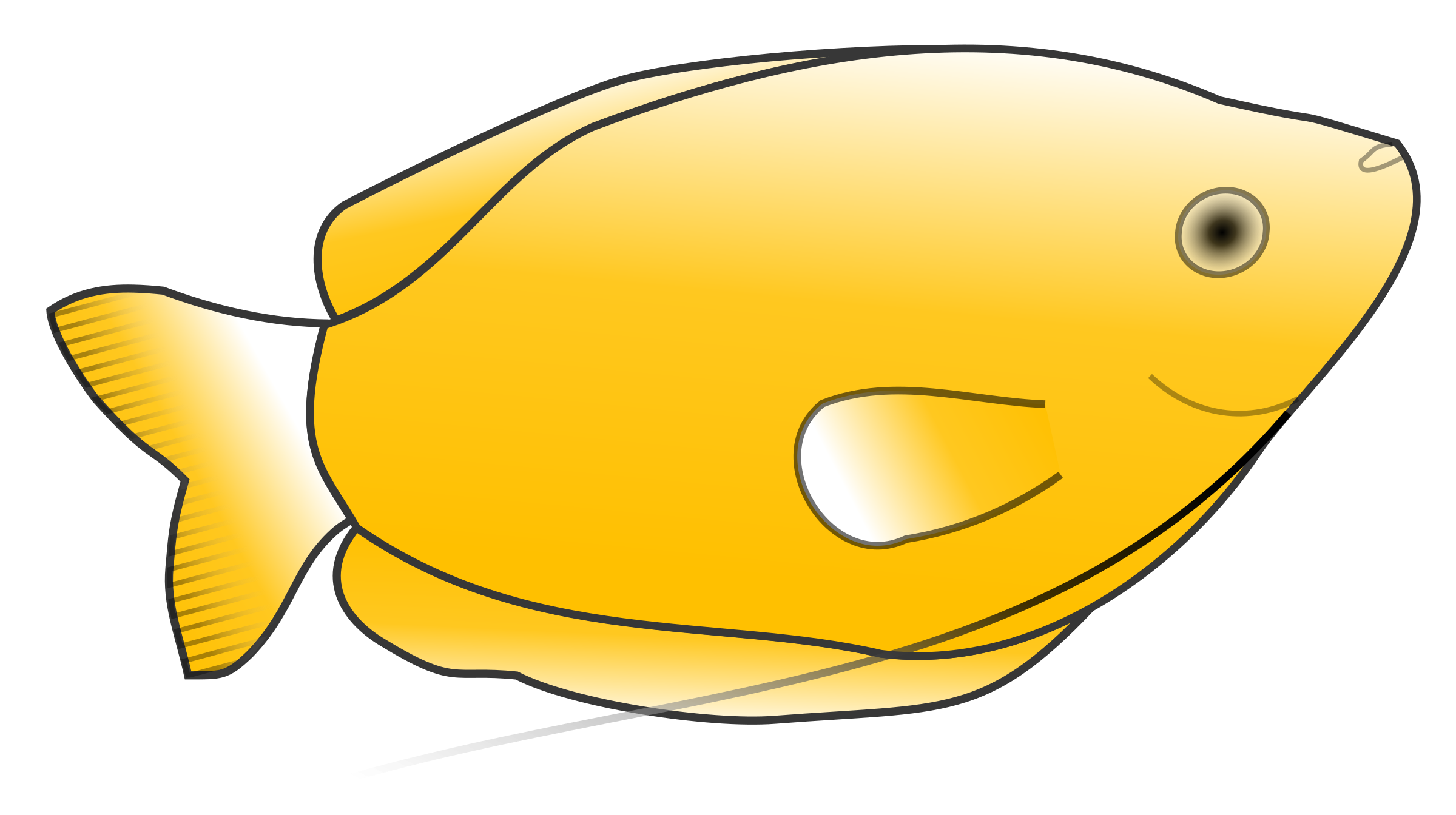 Yellow Gourami by Jonathon
