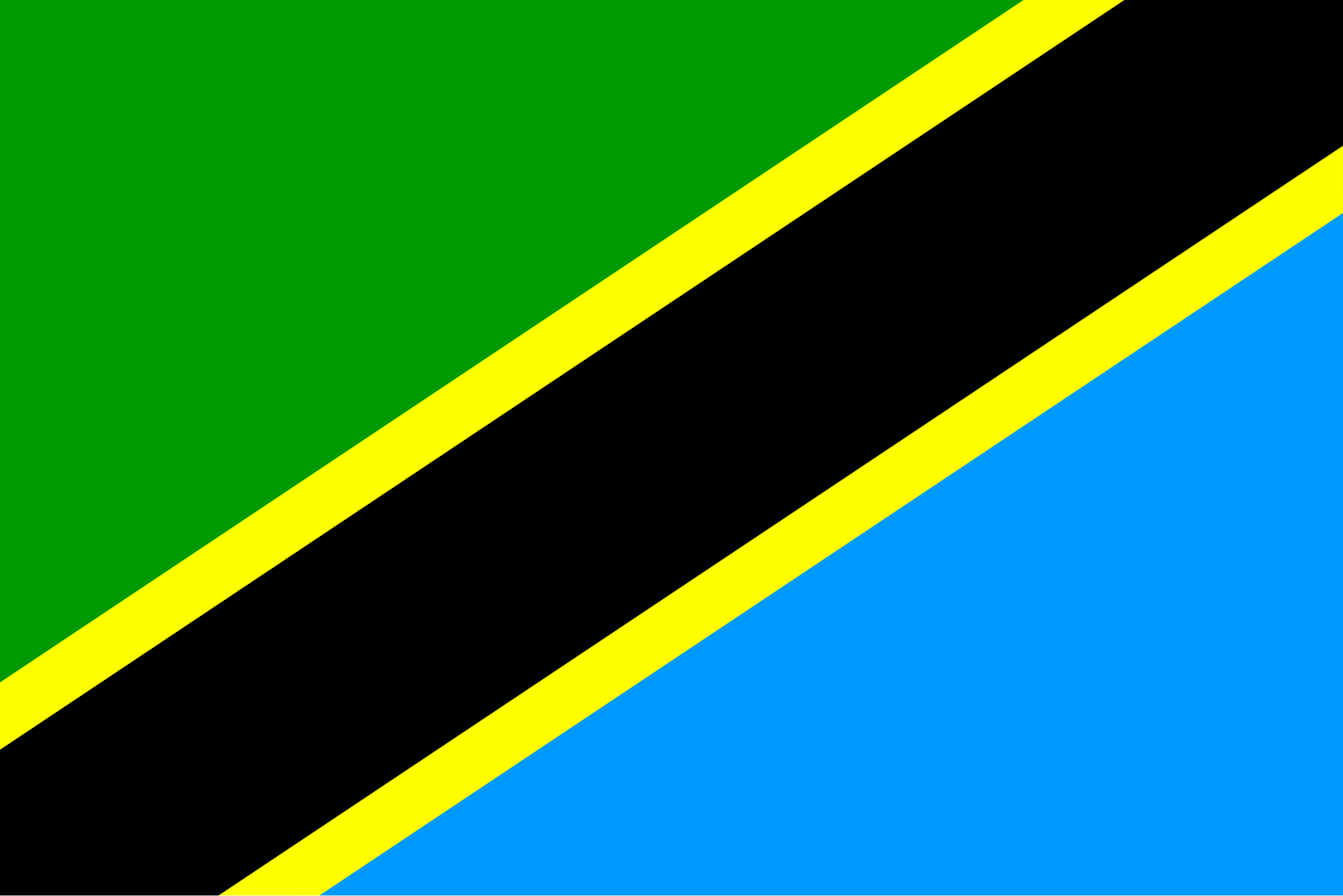 flag of Tanzania by Anonymous