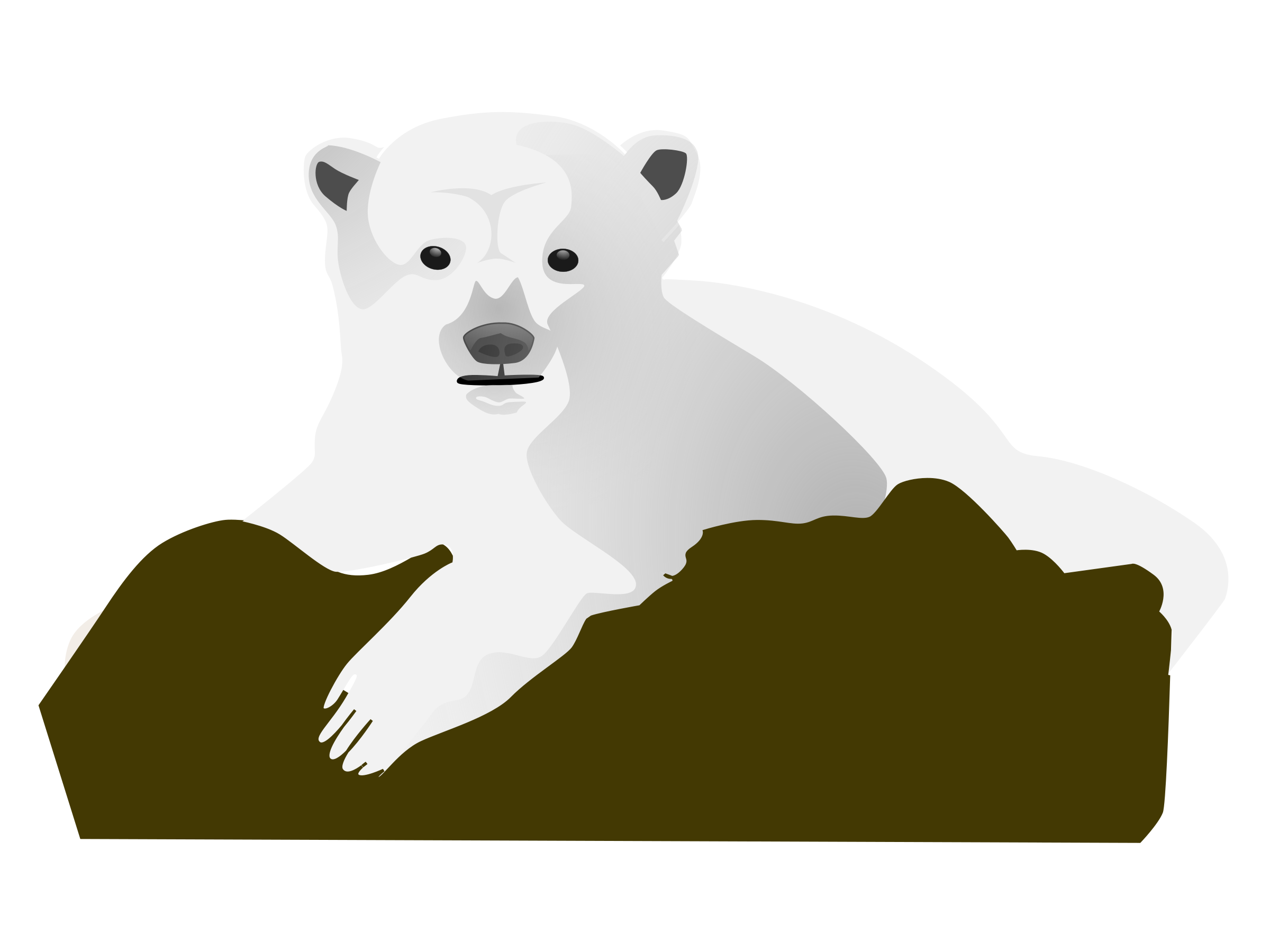 Knut the Polar Bear by aitor_avila