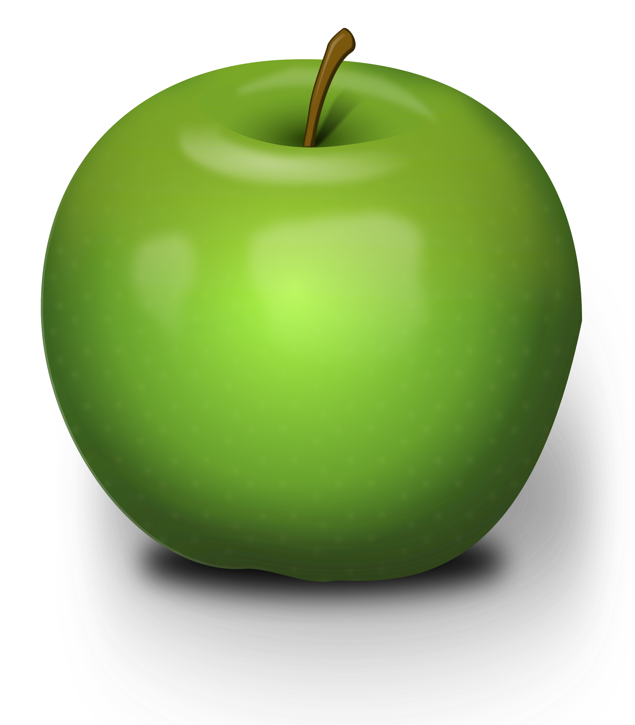 Photorealistic Green Apple by Chrisdesign