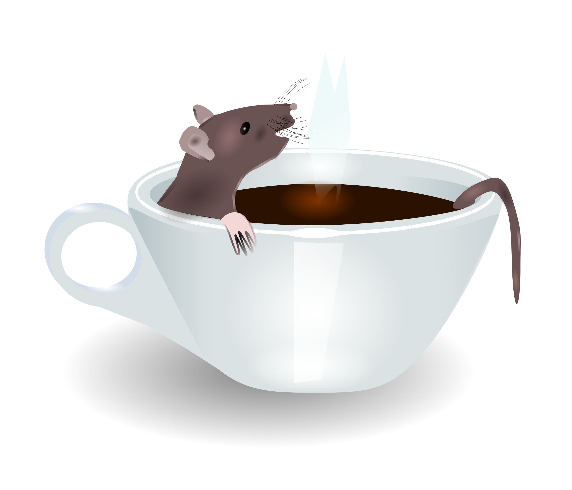 rat in coffee by redccshirt