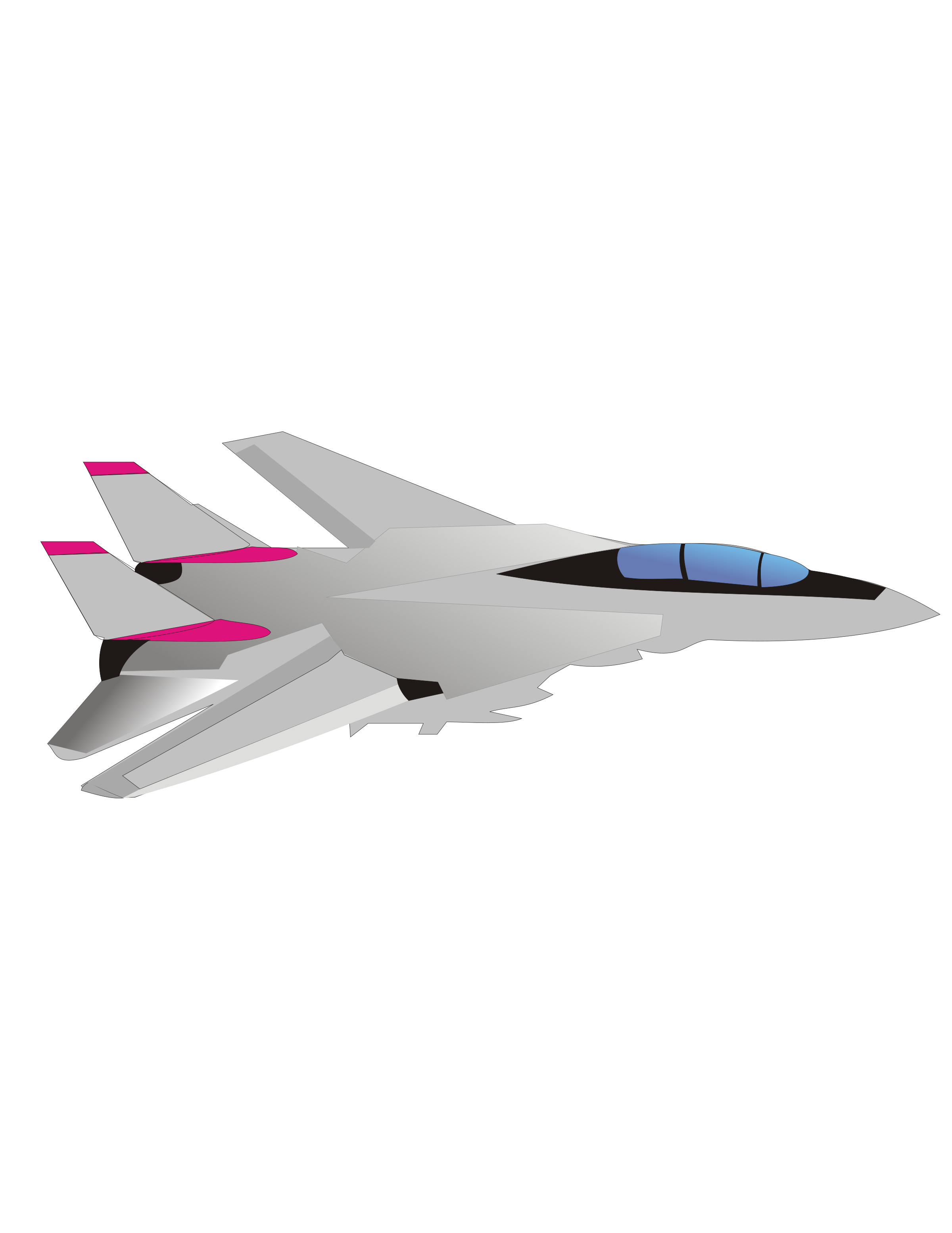 F14 Tomcat Fighter Jet by simatic