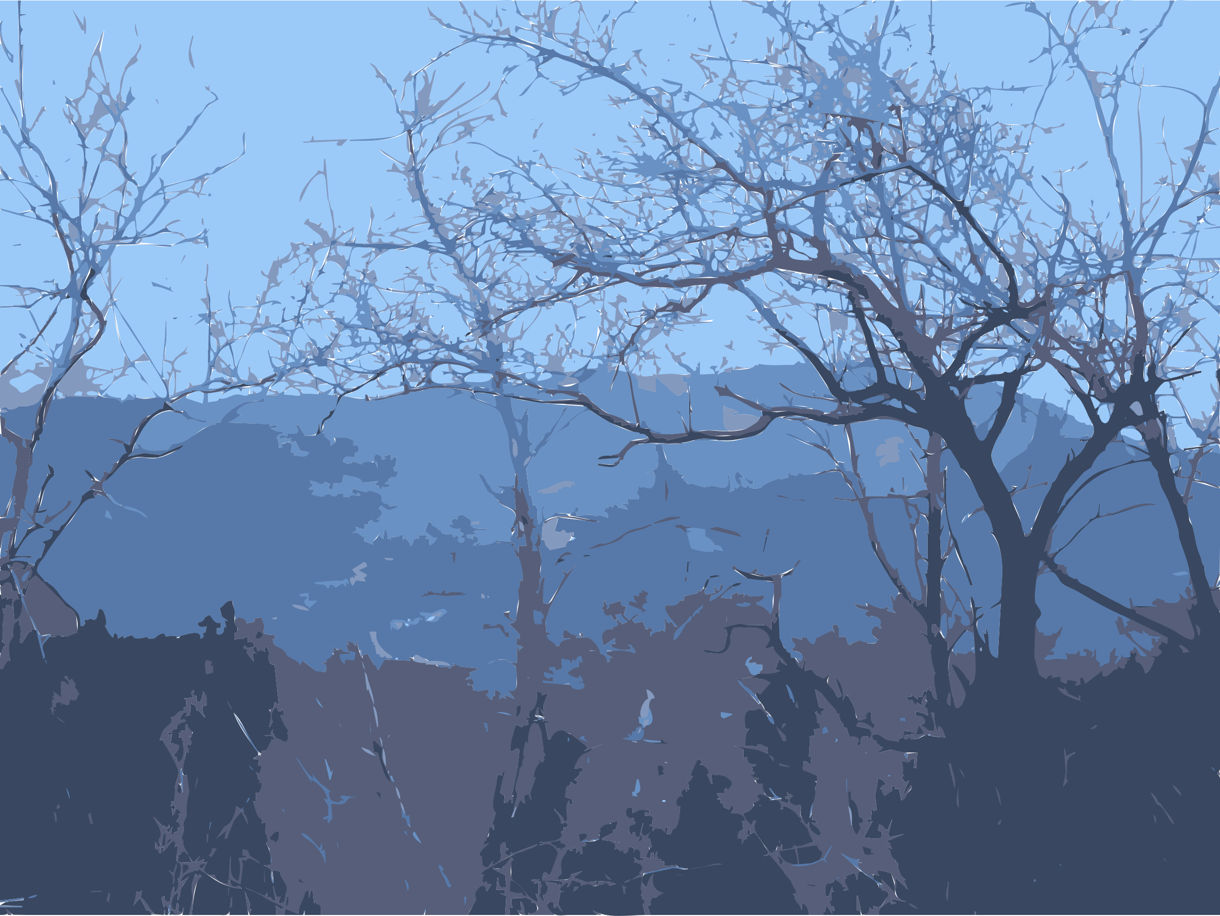 Some trees and some mountains by rejon