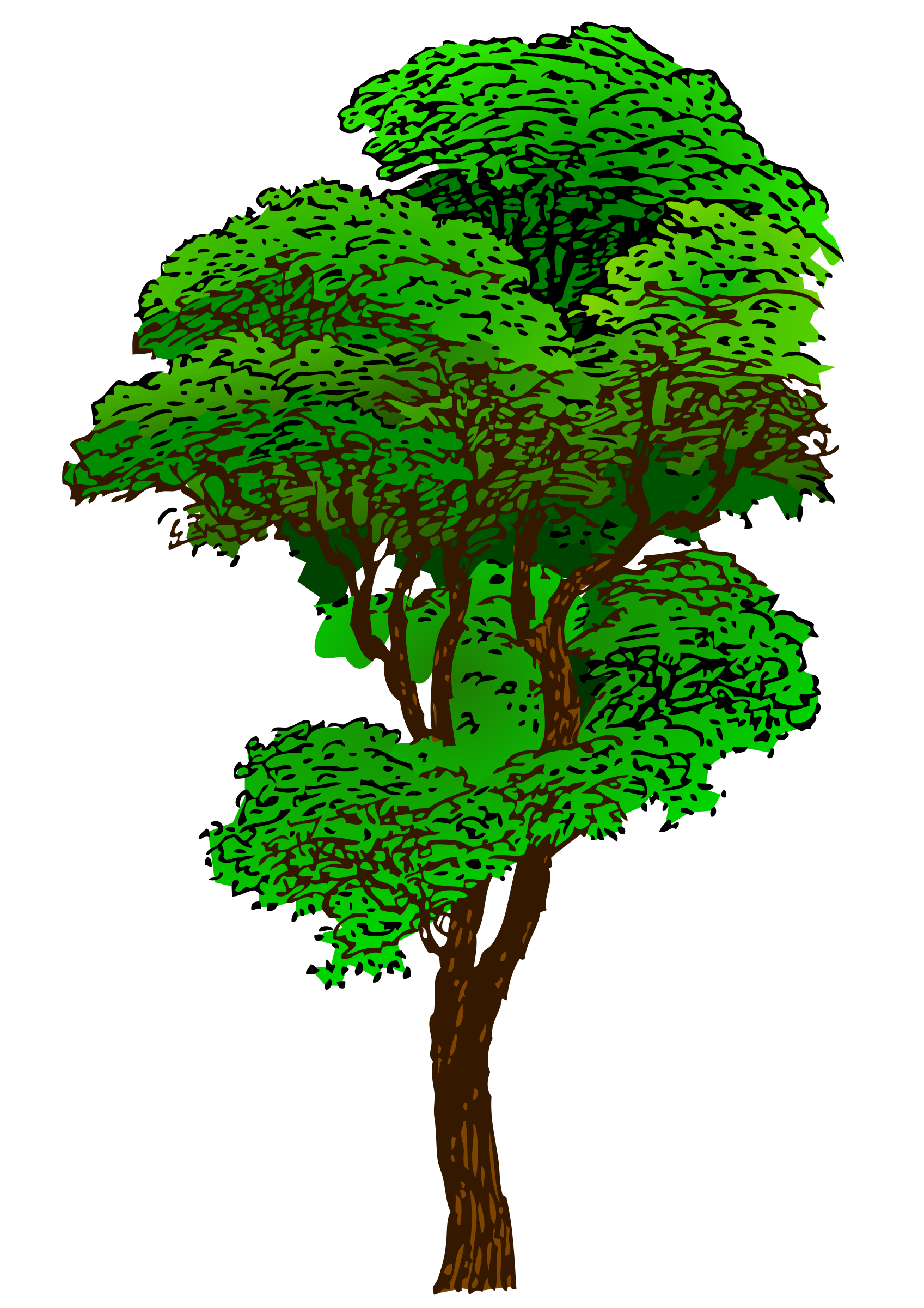 Colorized Tree by eady