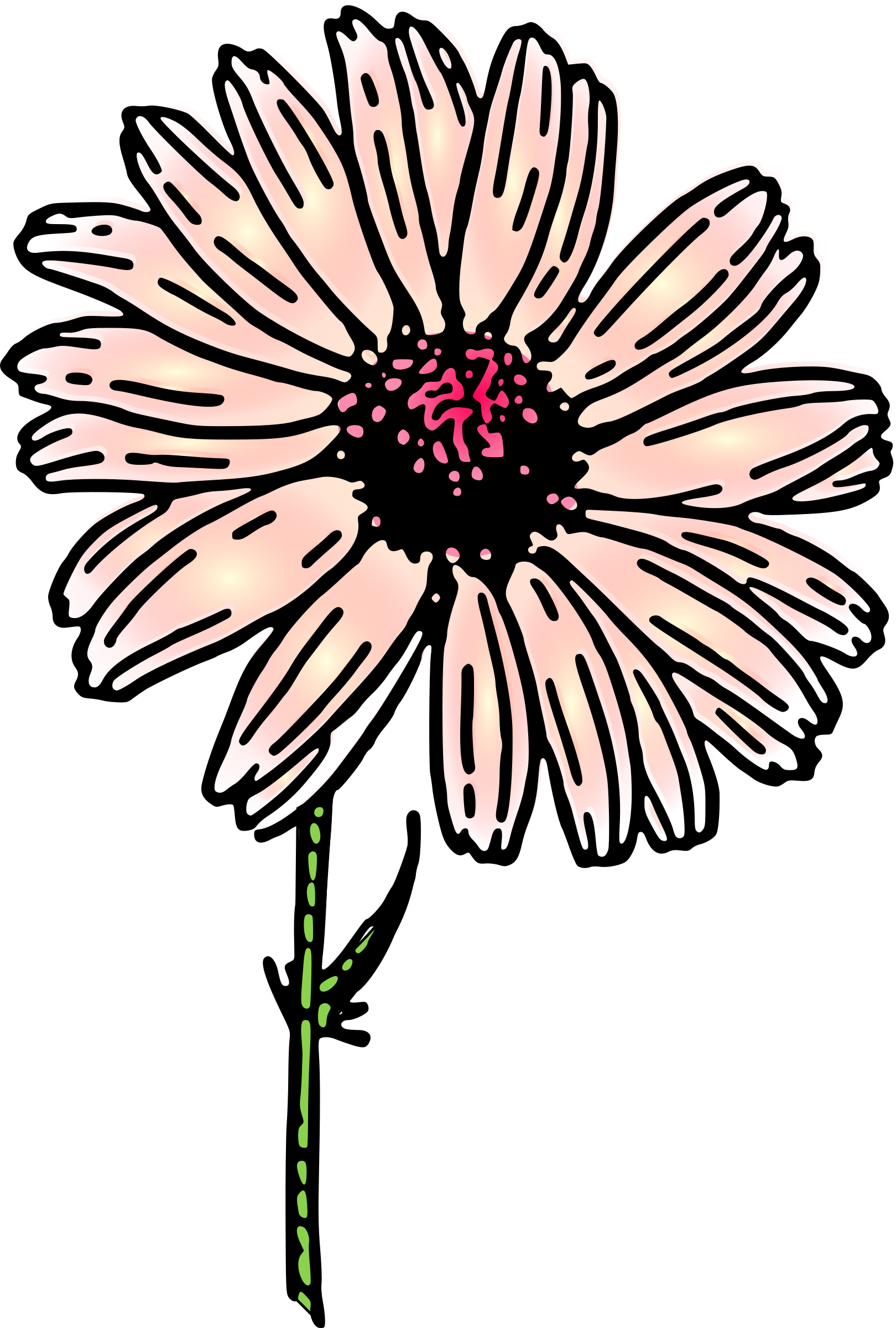 colored daisy 2 by pitr