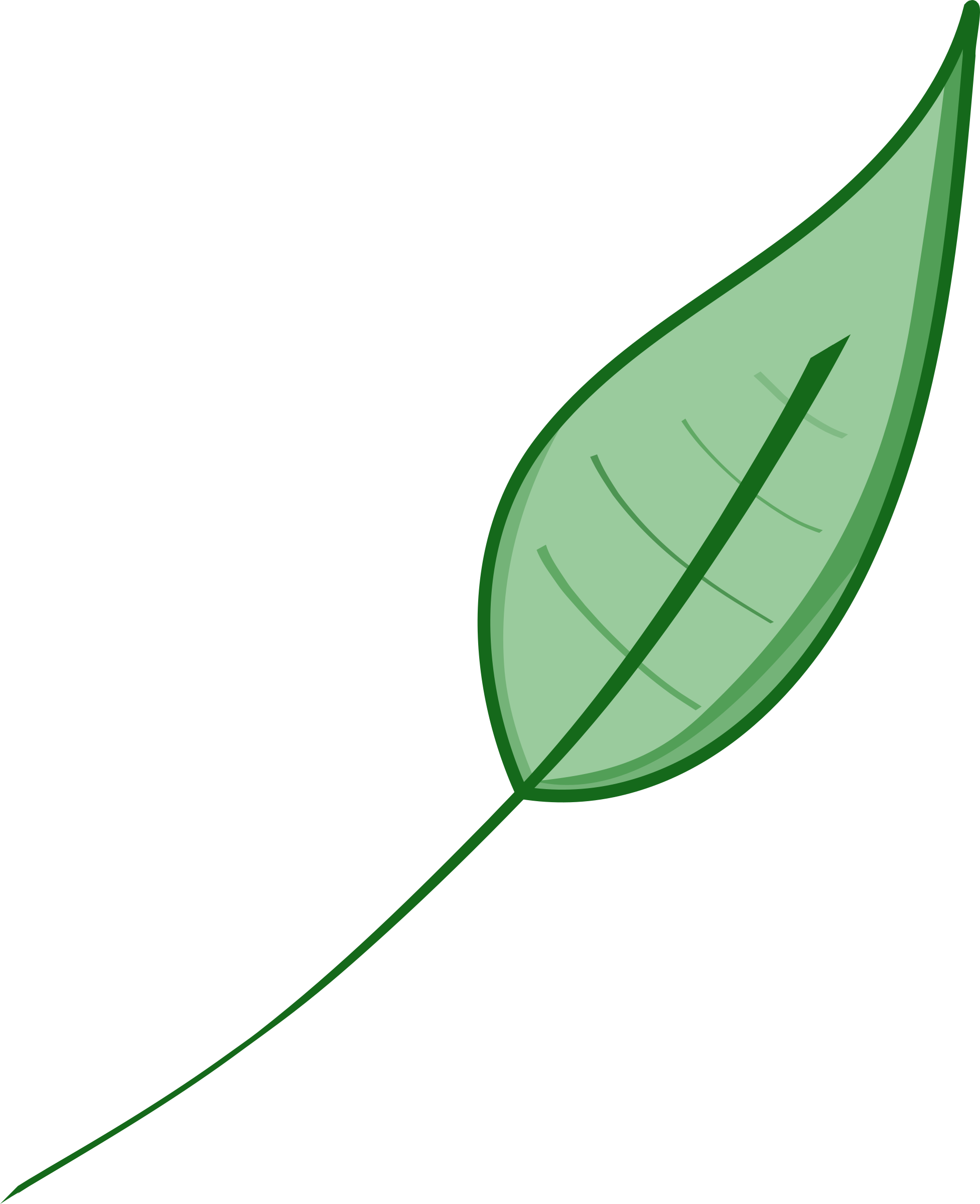 Green leaf by laobc