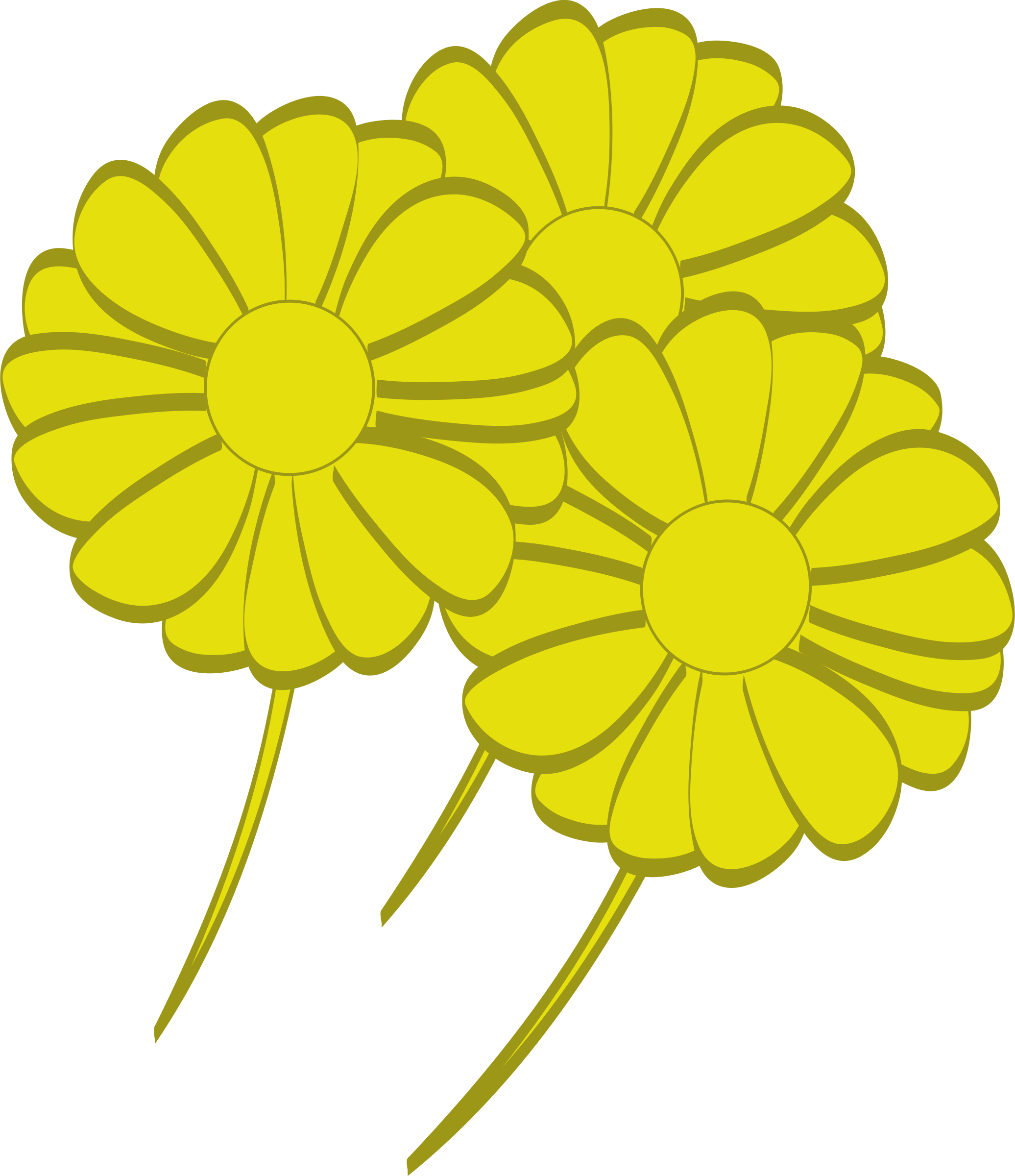 yellow flowers by benz